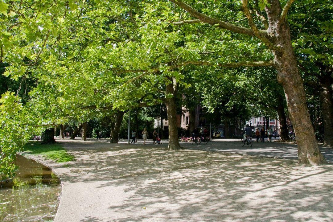 Tweede Helmersstraat 86 huis, Dubbel benedenhuis in Amsterdam foto-36