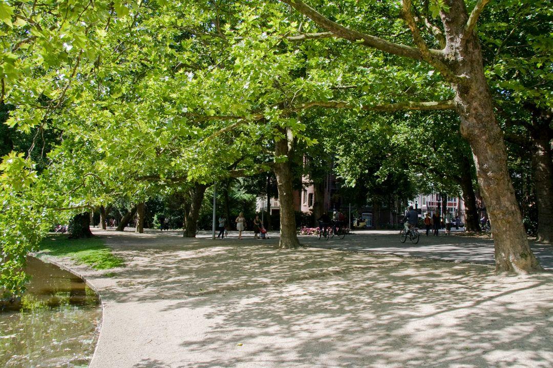 Tweede Helmersstraat 86 huis, Double downstairs house in Amsterdam foto-36