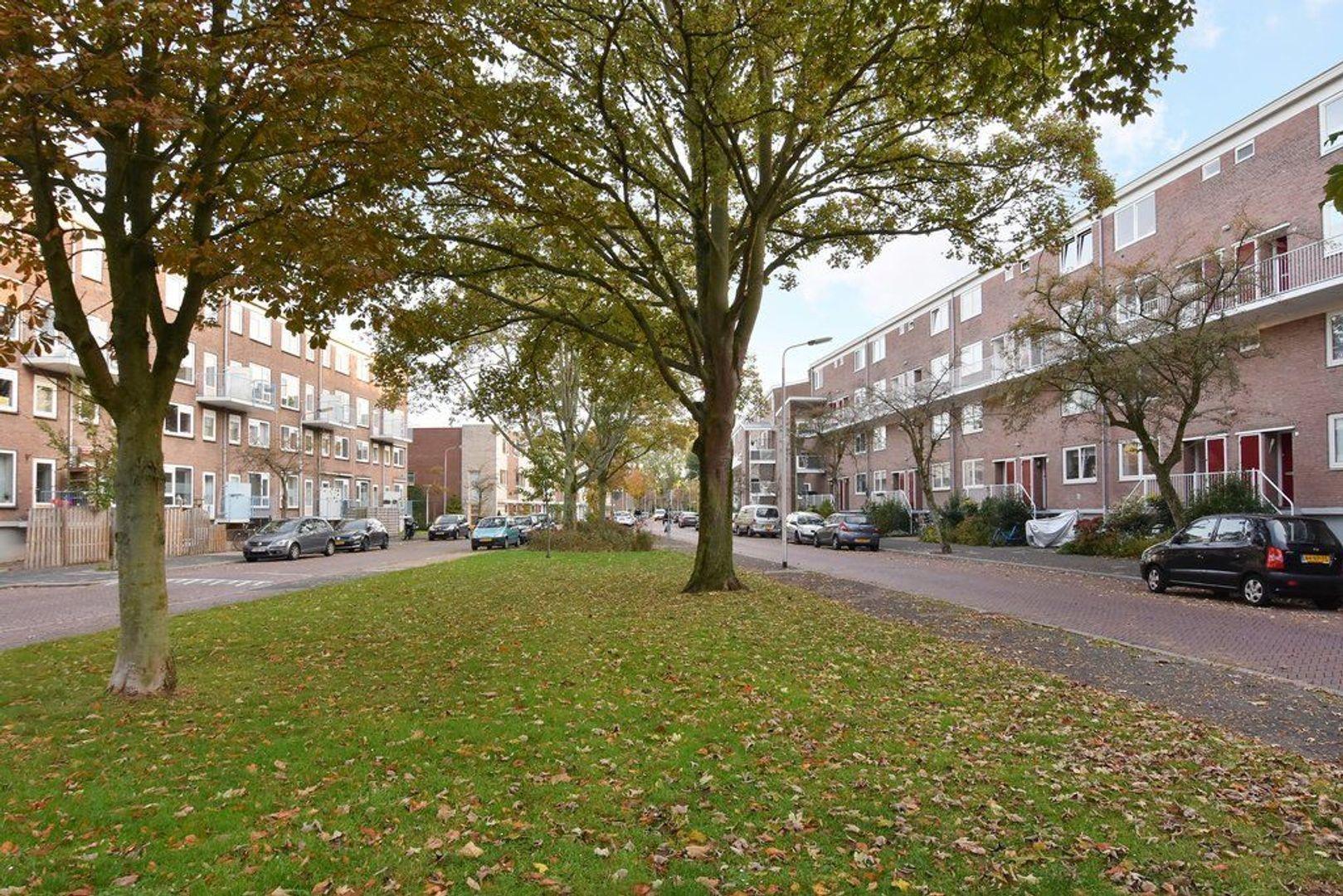 Van der Lelijstraat 51, Delft foto-30