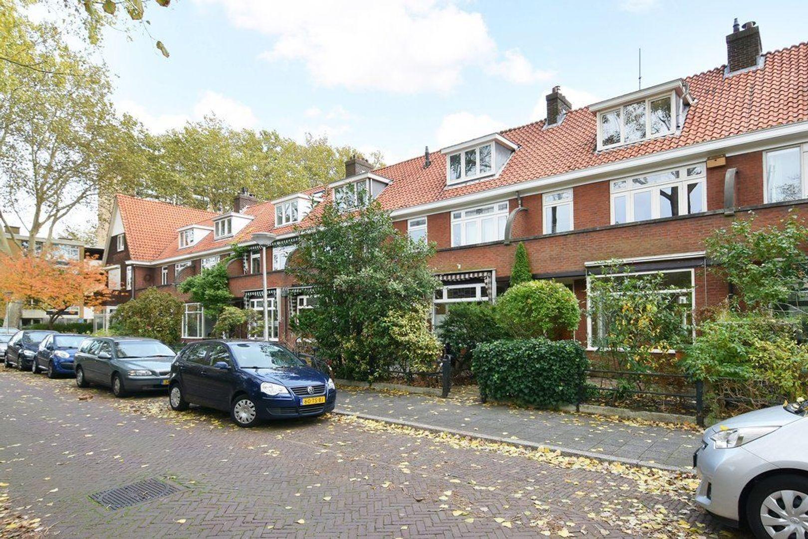 Molukkenstraat 13, Delft foto-36
