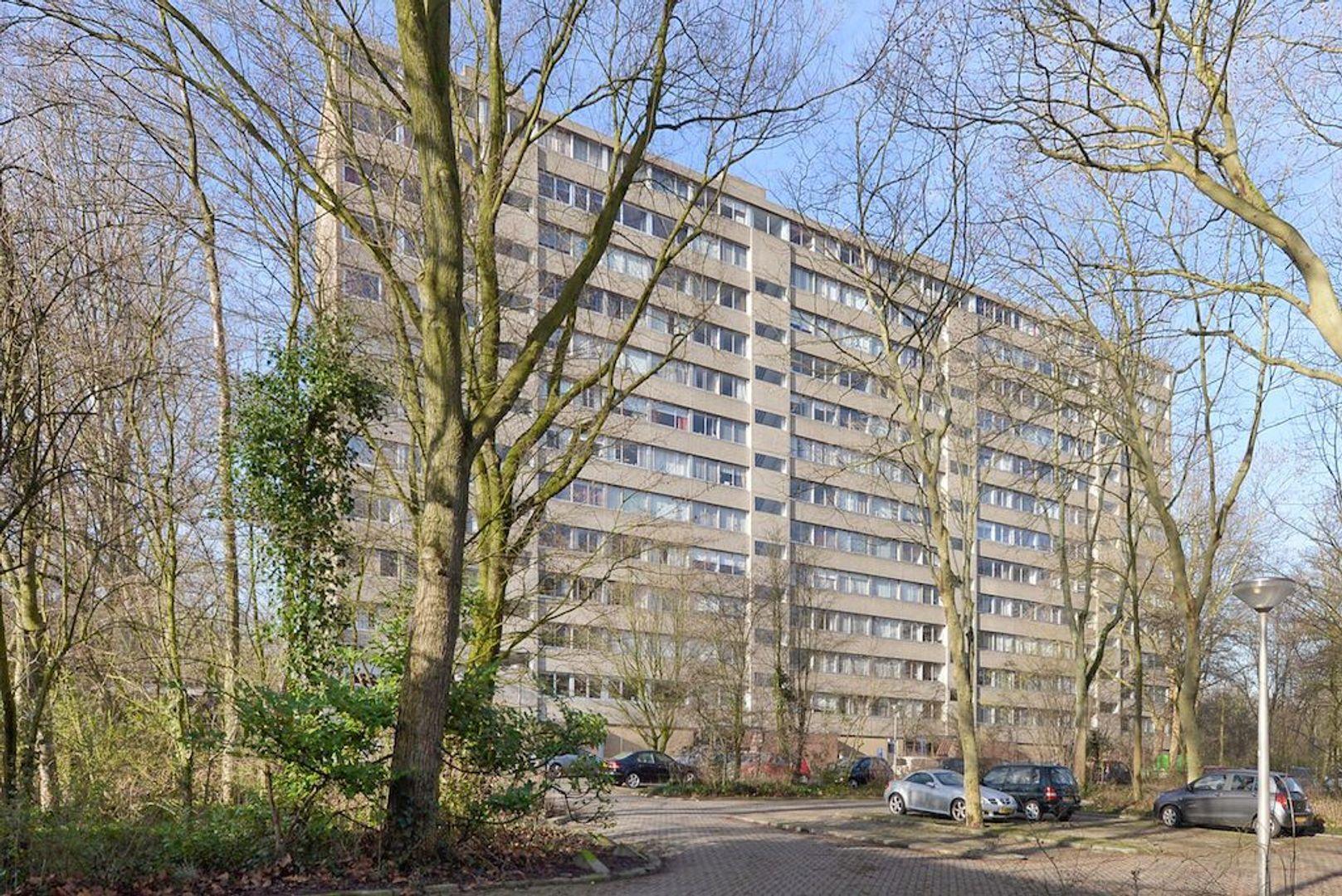 Adama van Scheltemaplein 38, Delft foto-0