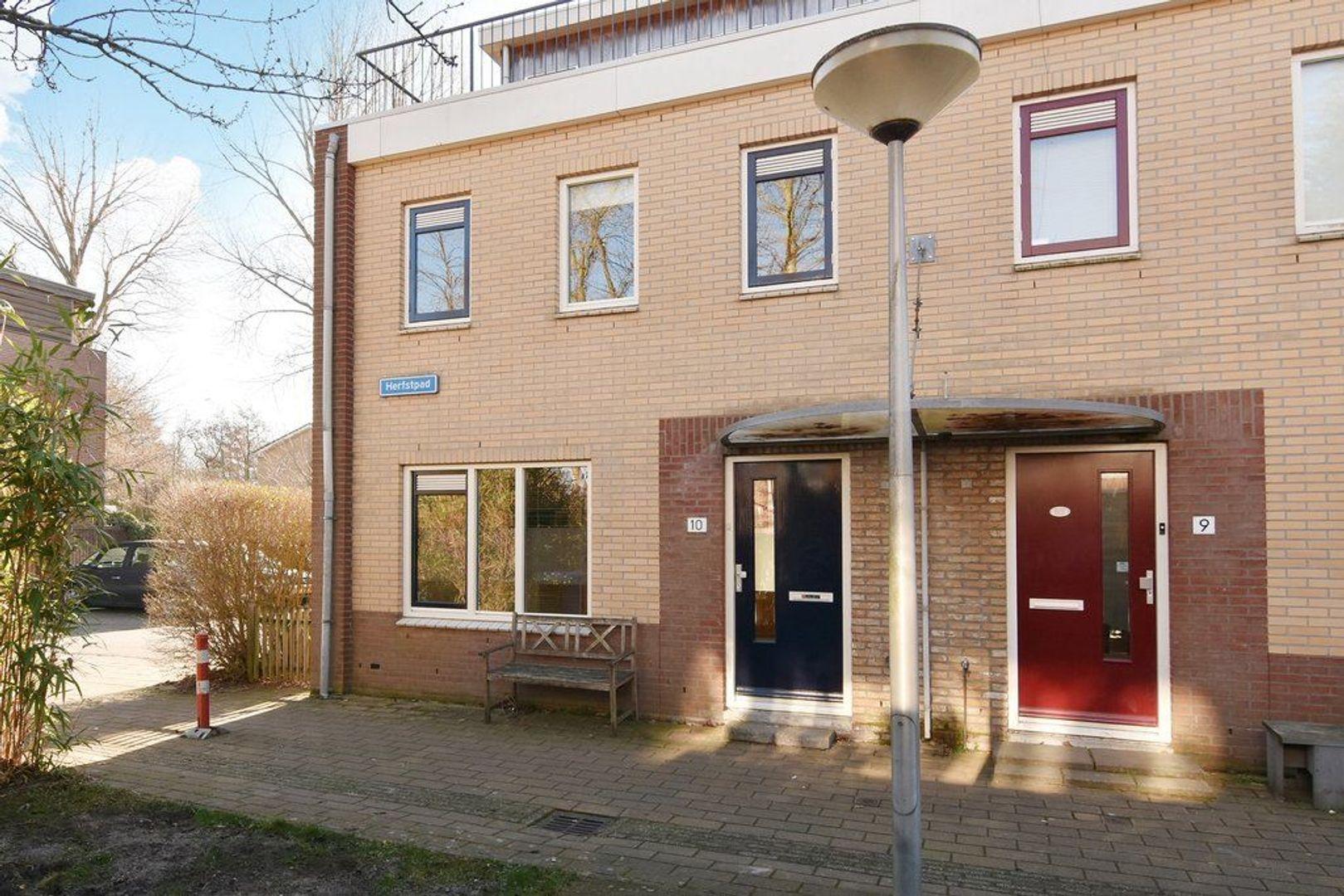 Herfstpad 10, Delft foto-31