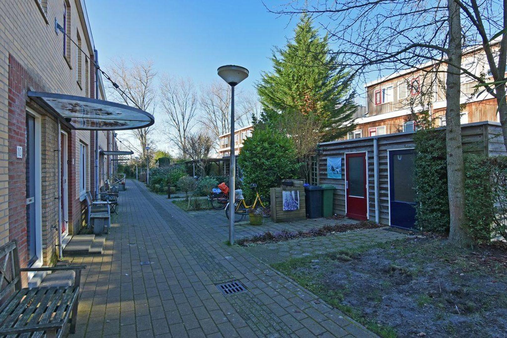 Herfstpad 10, Delft foto-32