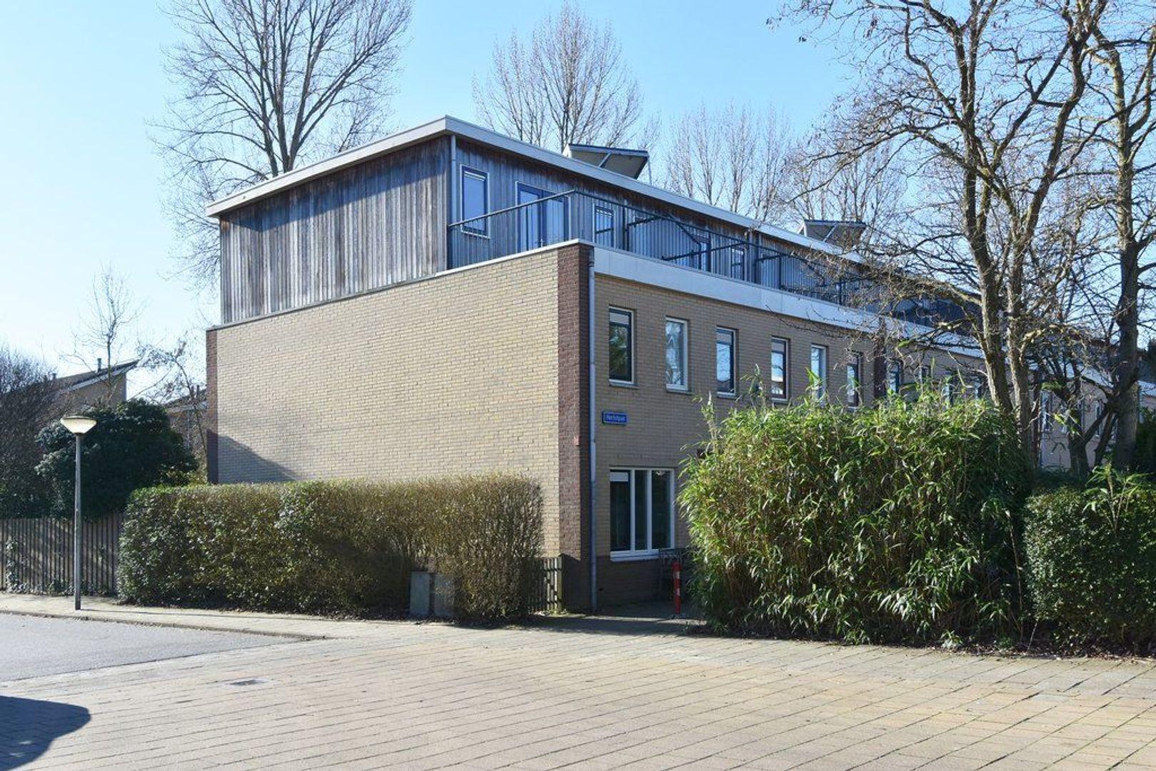 Herfstpad 10, Delft foto-33