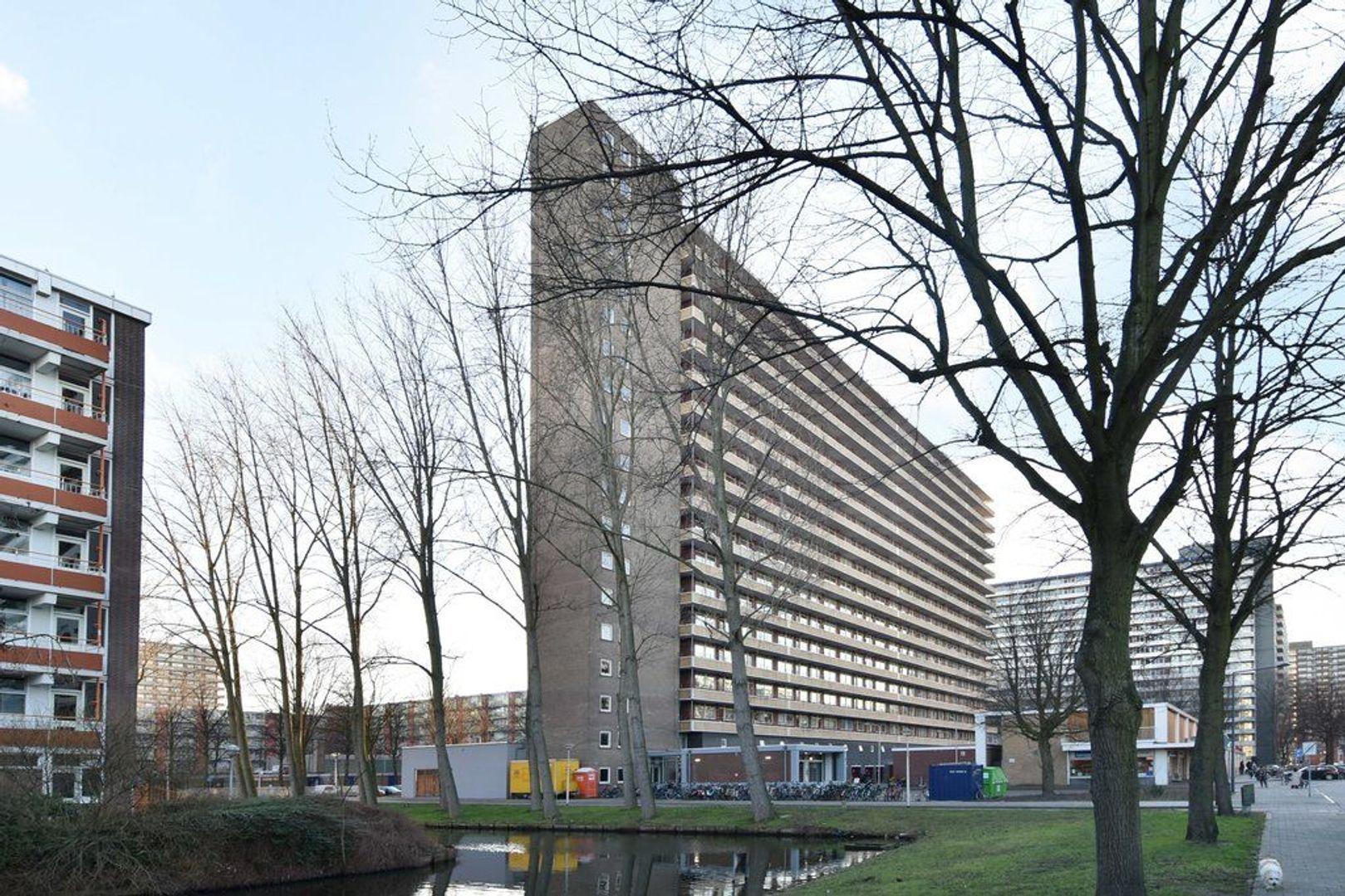 Hendrik Tollensstraat 416, Delft foto-0
