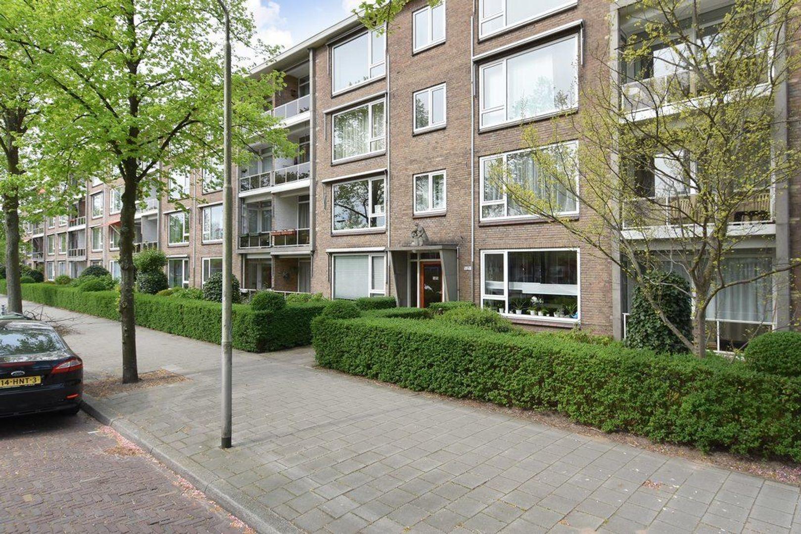 Willem van Aelststraat 21, Delft foto-0