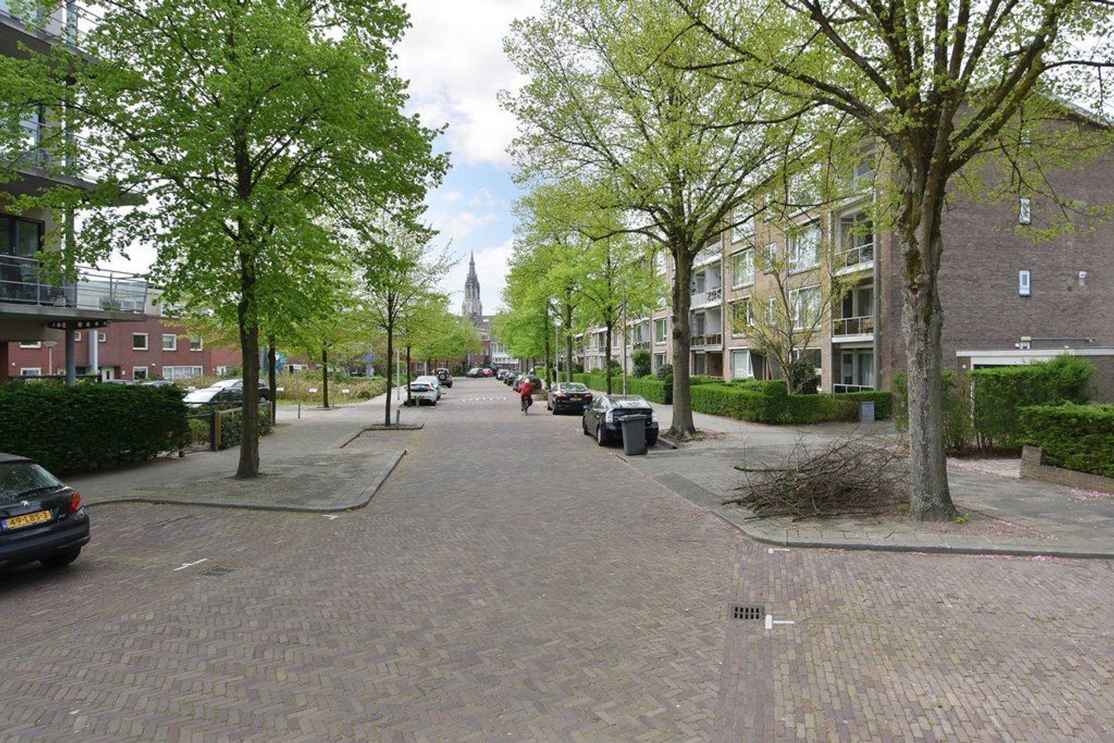 Willem van Aelststraat 21, Delft foto-21