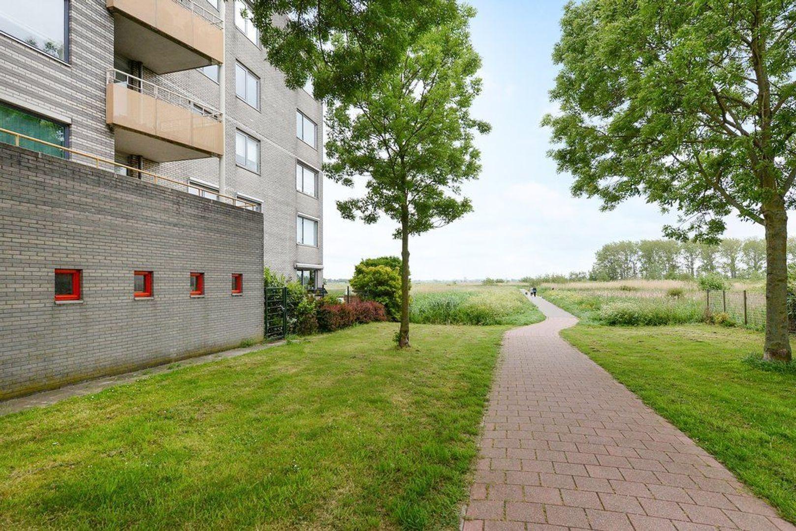 Straat van Ormoes 89, Delft foto-23