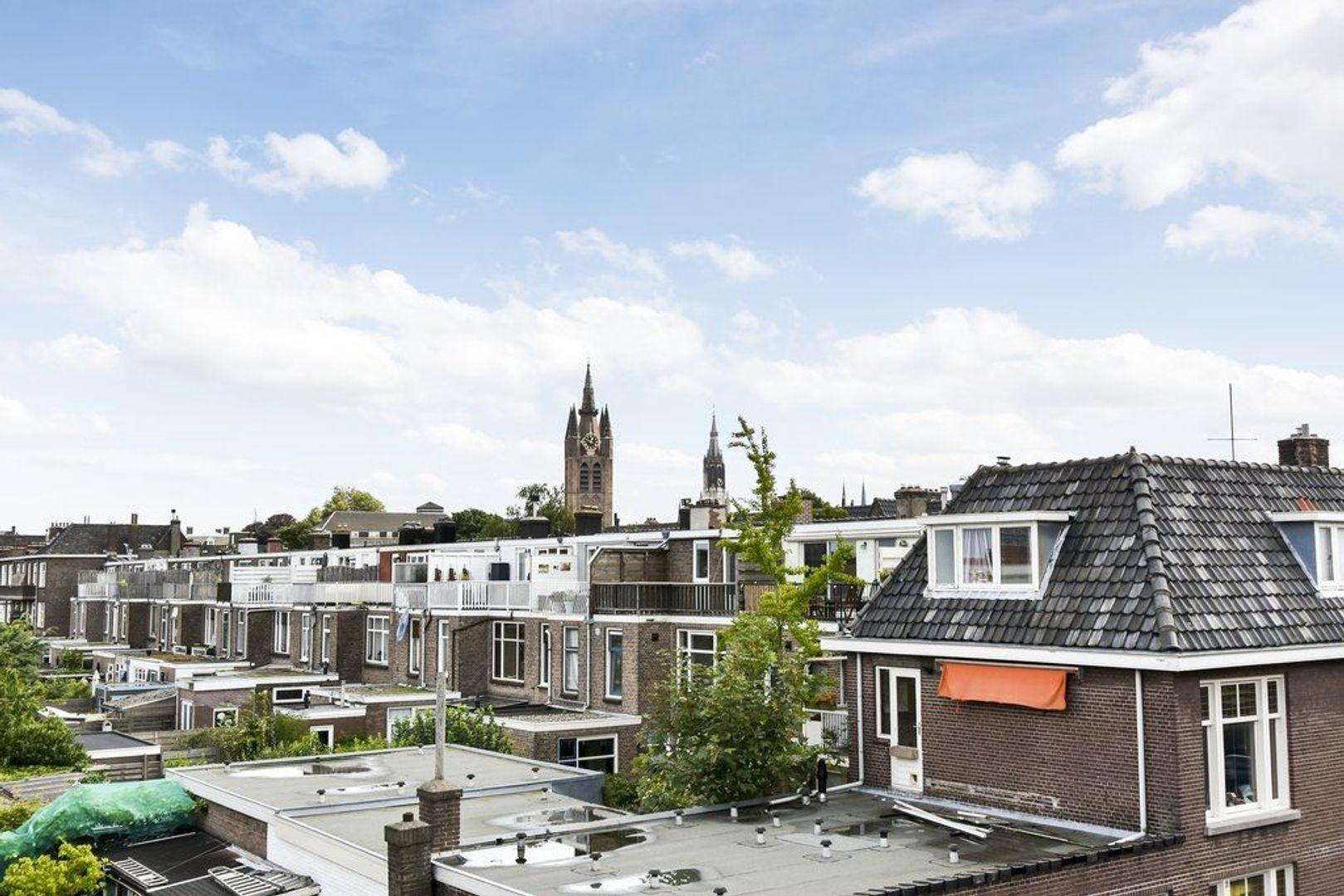Van Hallstraat 9, Delft foto-48