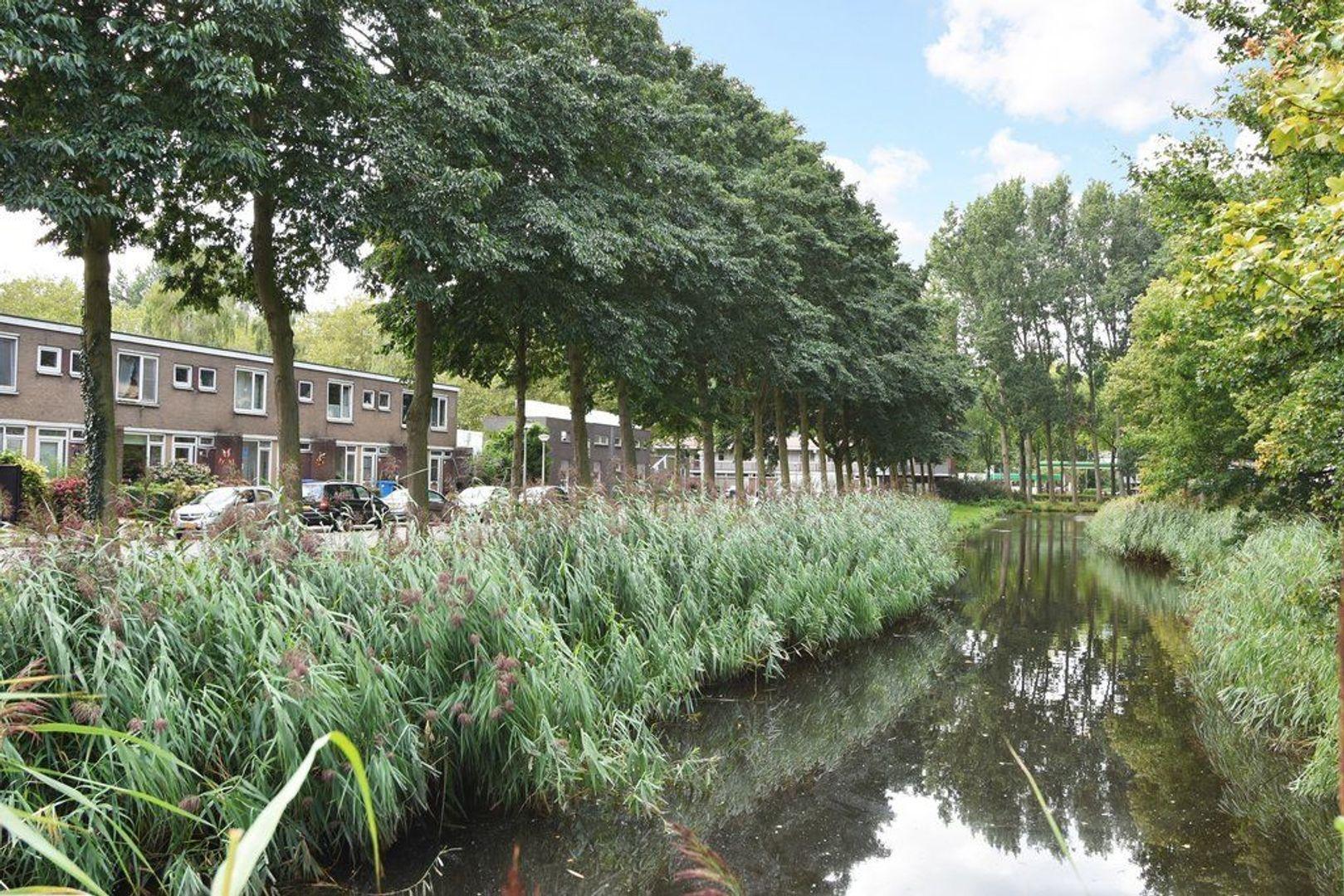 Albert Verweylaan 5, Delft foto-28