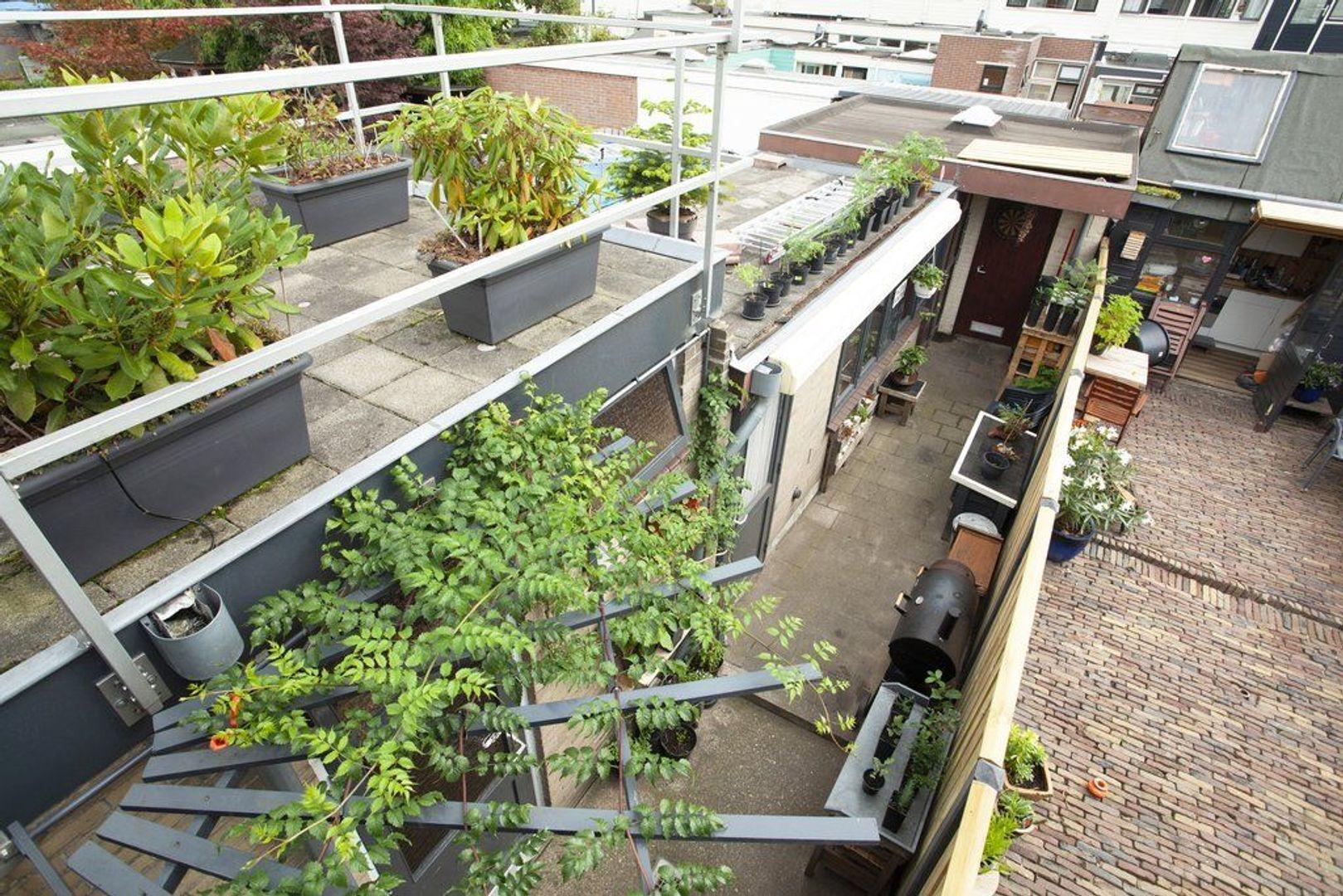 Dr. Schaepmanstraat 19, Delft foto-19