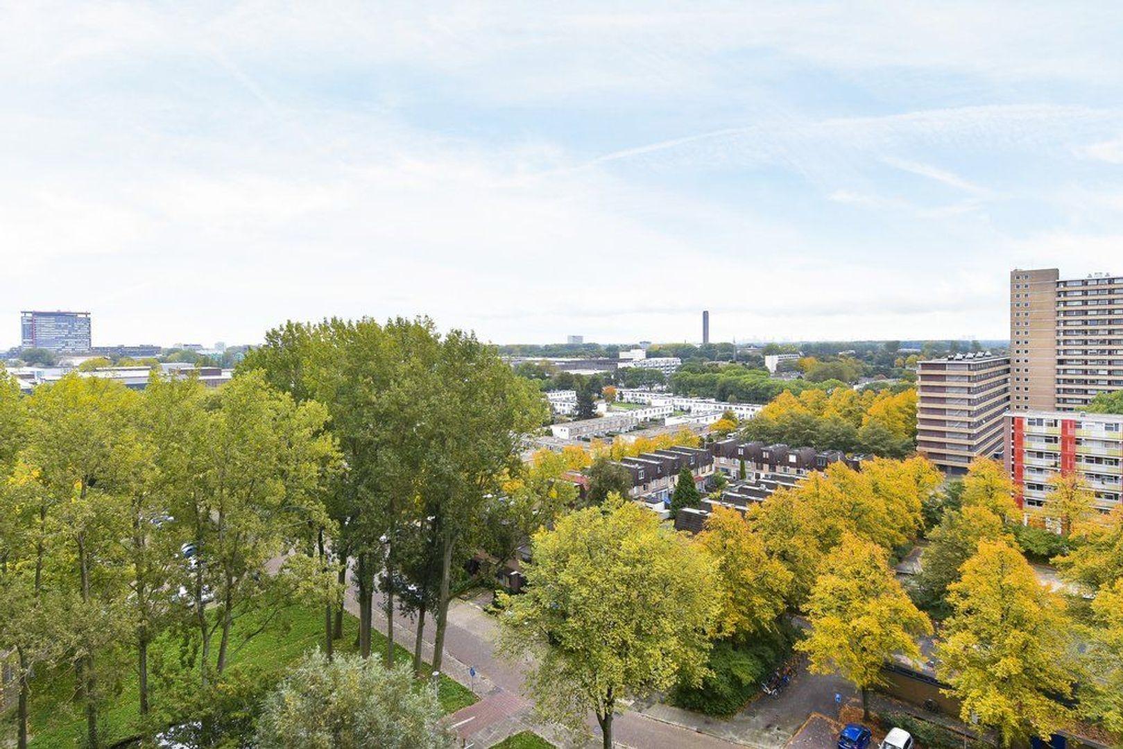 Hendrik Tollensstraat 256, Delft foto-22