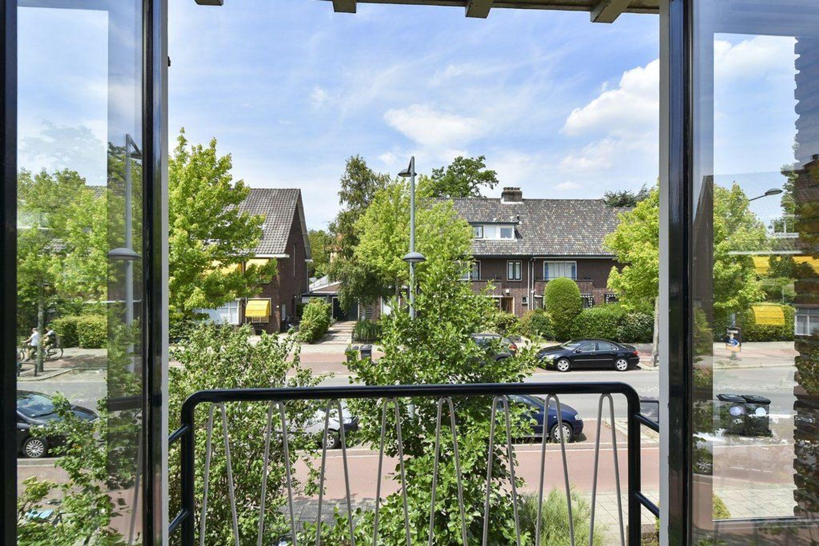 Ruys de Beerenbrouckstraat 25, Delft foto-24