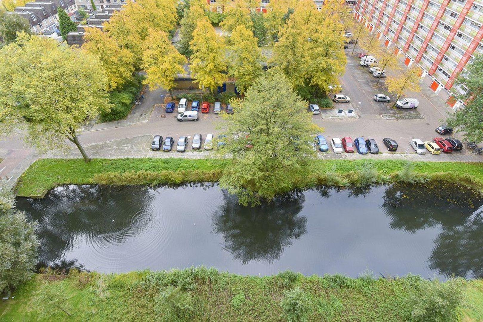 Hendrik Tollensstraat 256, Delft foto-20