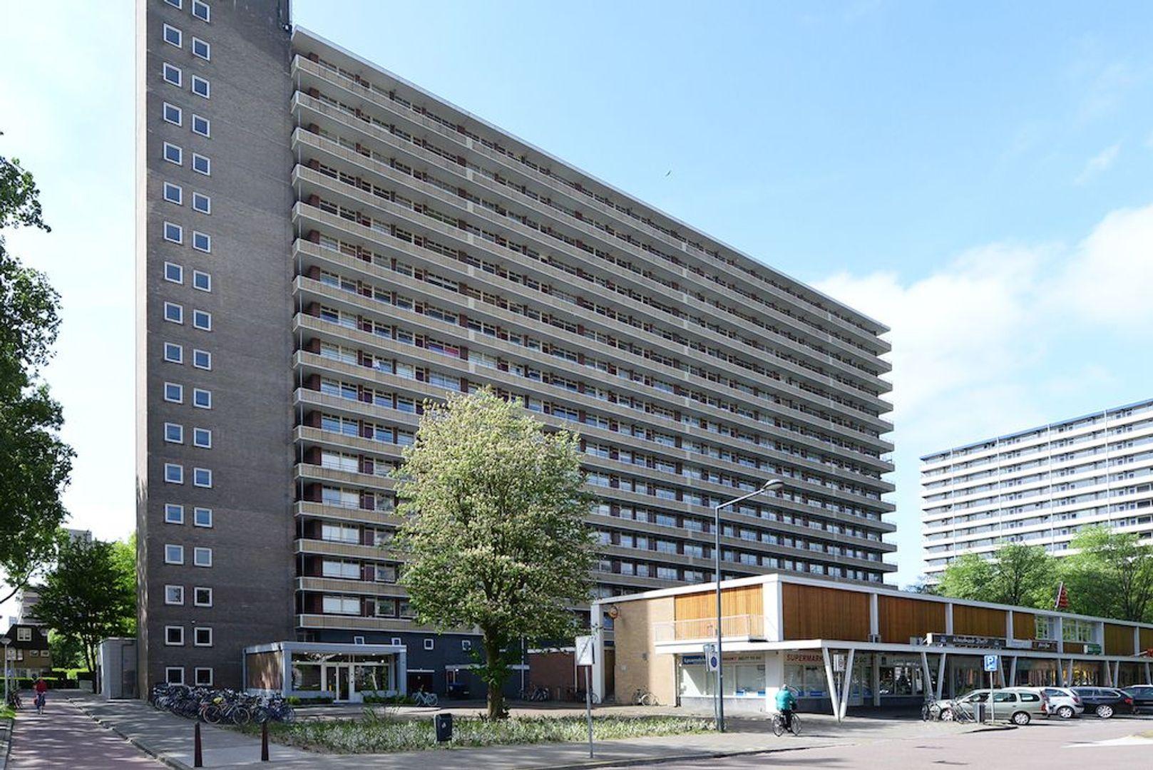 Hendrik Tollensstraat 256, Delft foto-0
