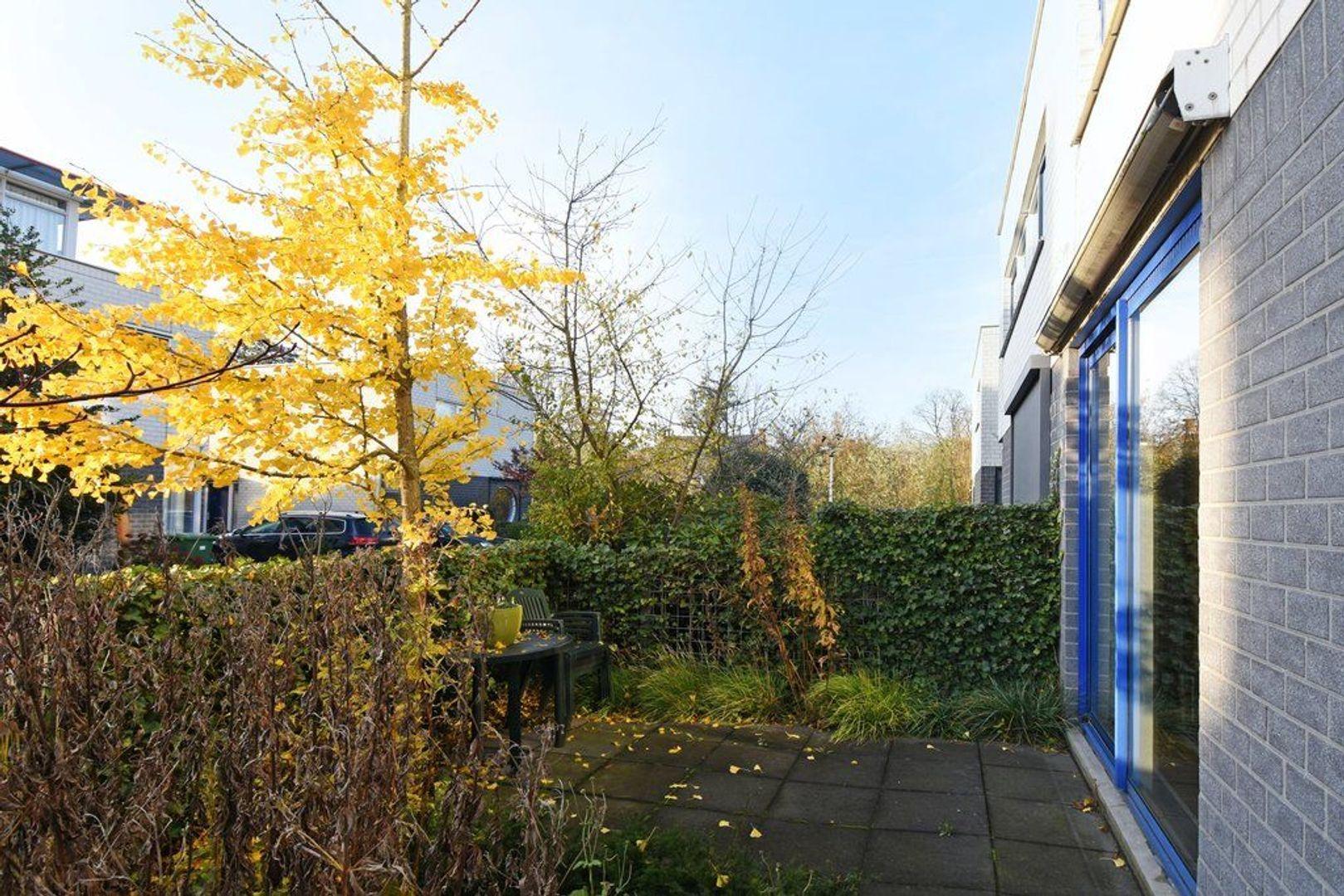 Rubberplantage 14, Delft foto-5