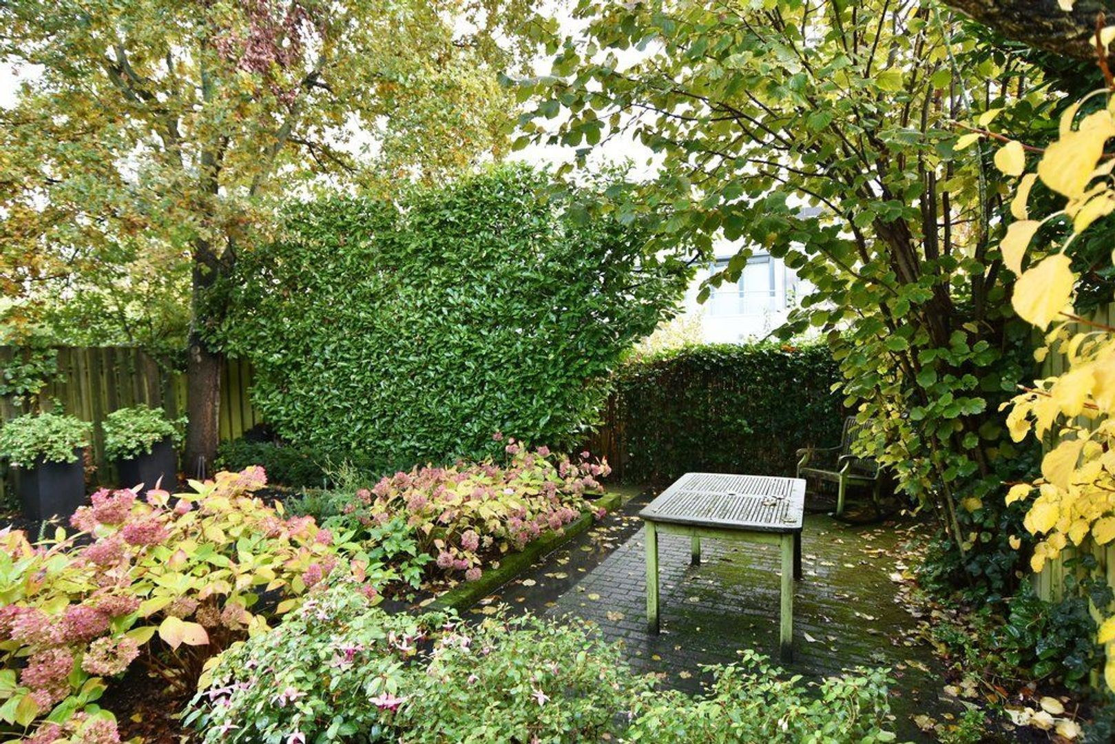 Rubberplantage 14, Delft foto-18