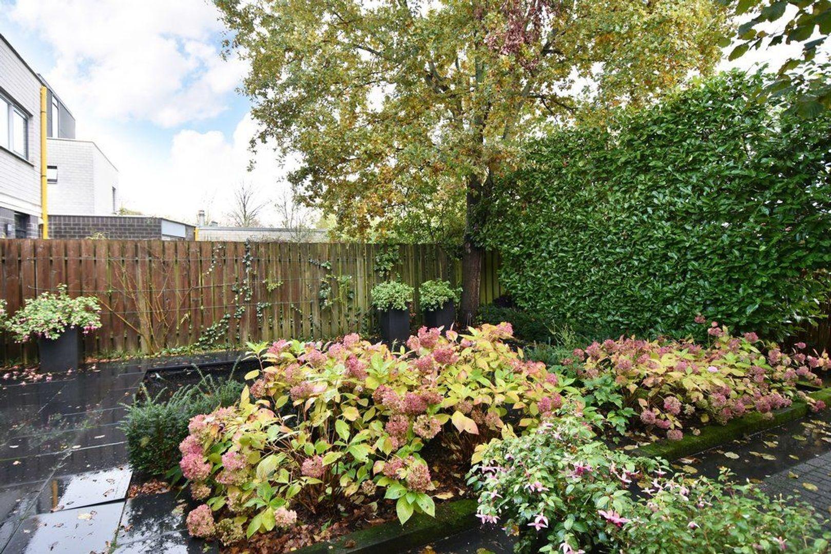 Rubberplantage 14, Delft foto-1