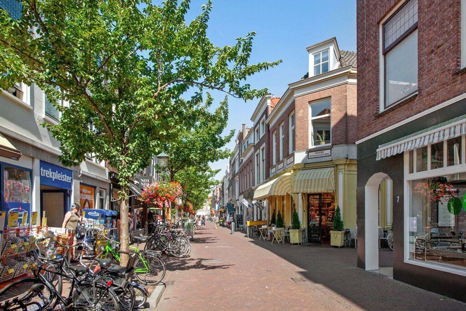 Heilige Geestkerkhof 2, Delft foto-38