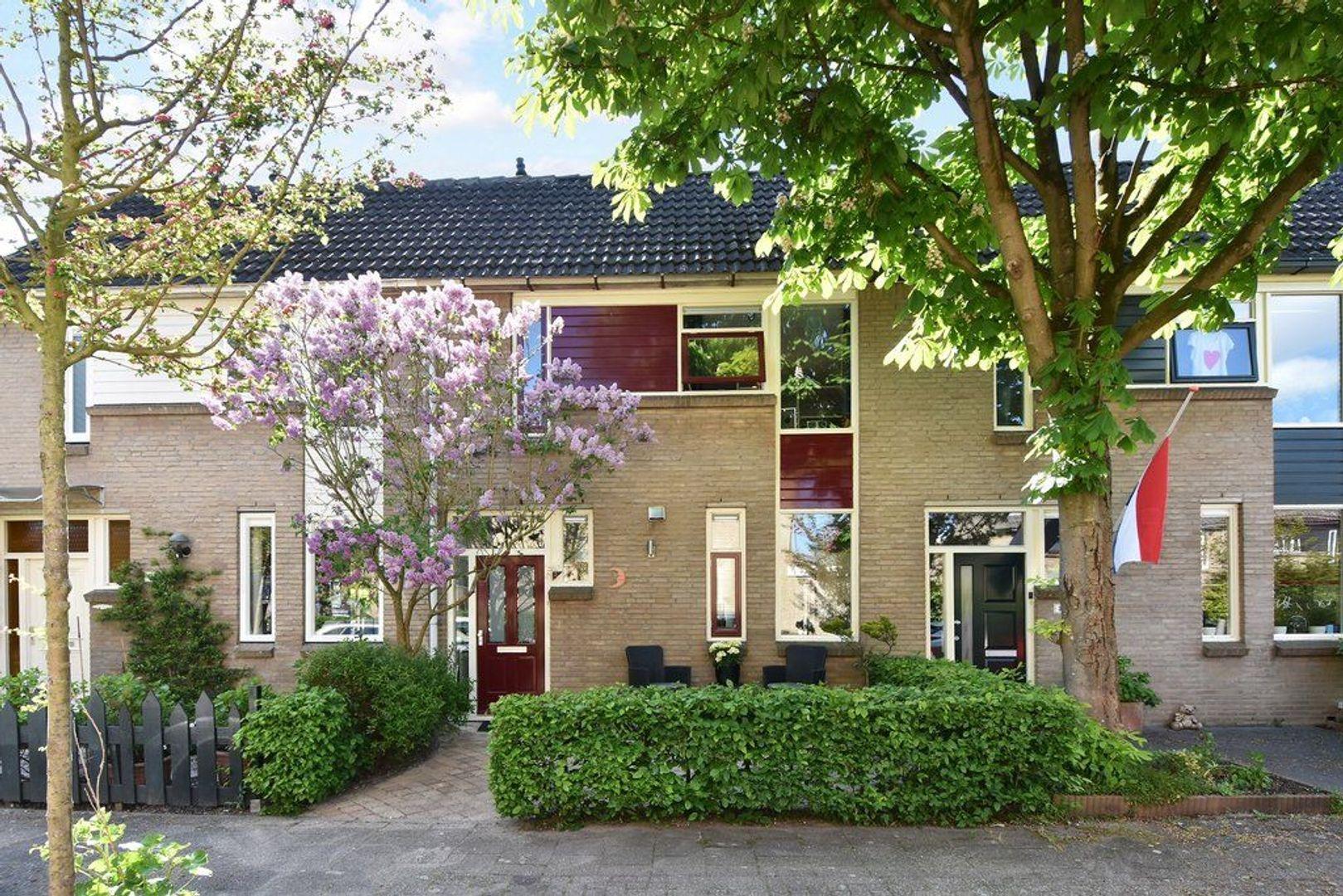 Bunzinghof 2, Delft foto-0