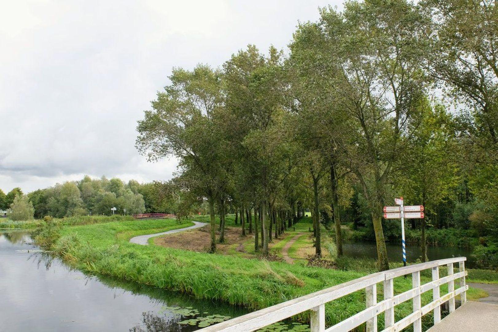 Waterviolier 40, Den Haag foto-40