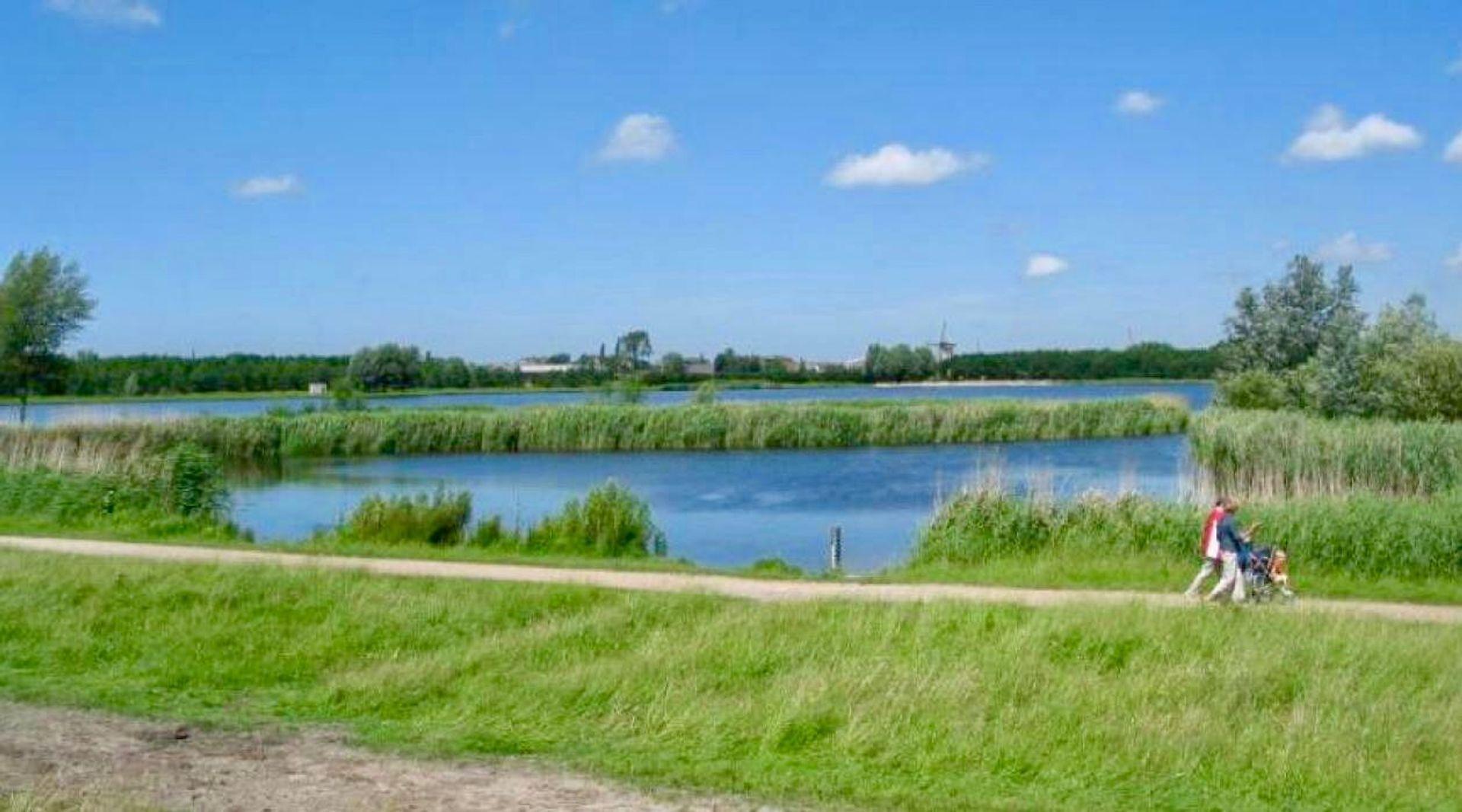 Waterviolier 40, Den Haag foto-44
