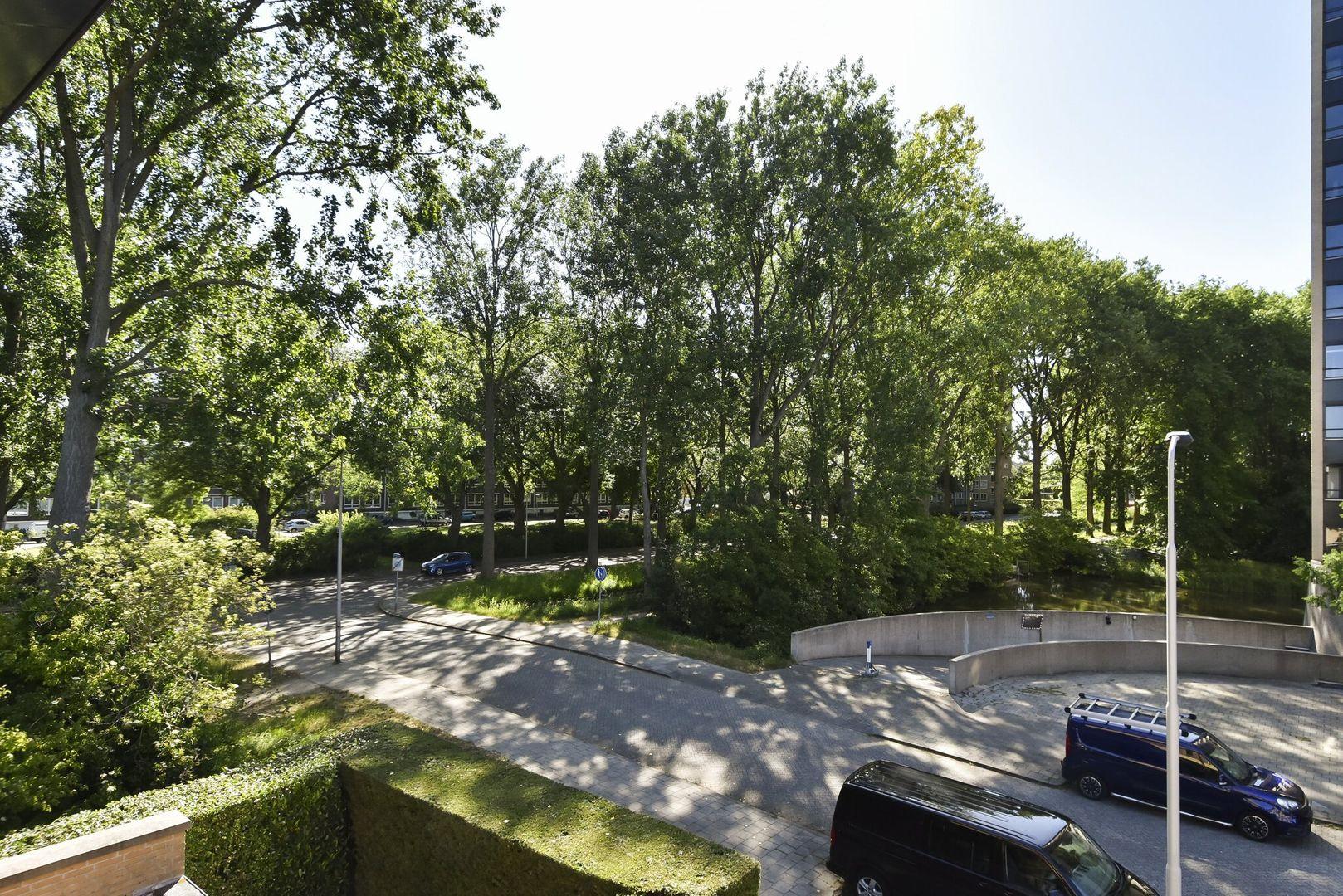Hofzoom 35, Delft foto-65