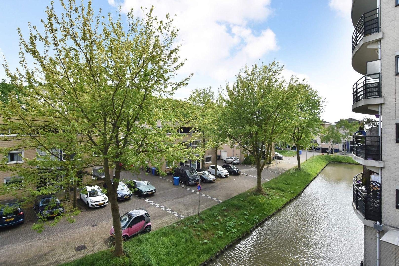 Parkzoom 253, Delft foto-33