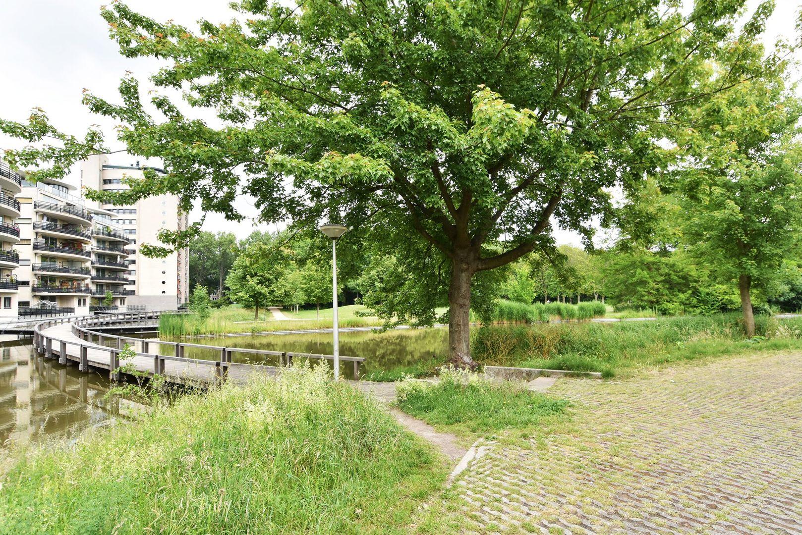 Parkzoom 253, Delft foto-32
