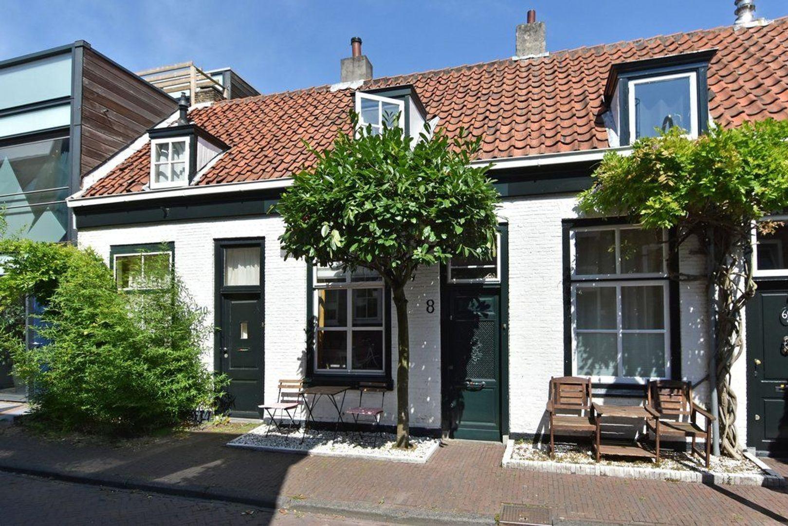 Pluympot 8, Delft foto-28