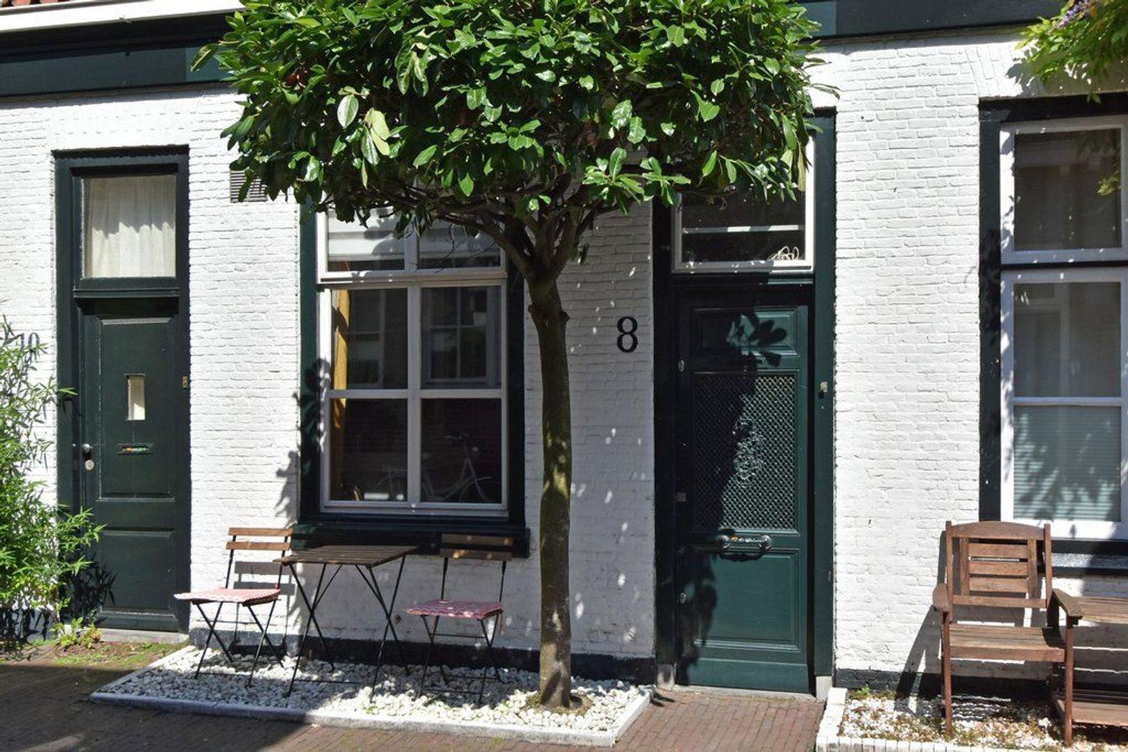 Pluympot 8, Delft foto-2