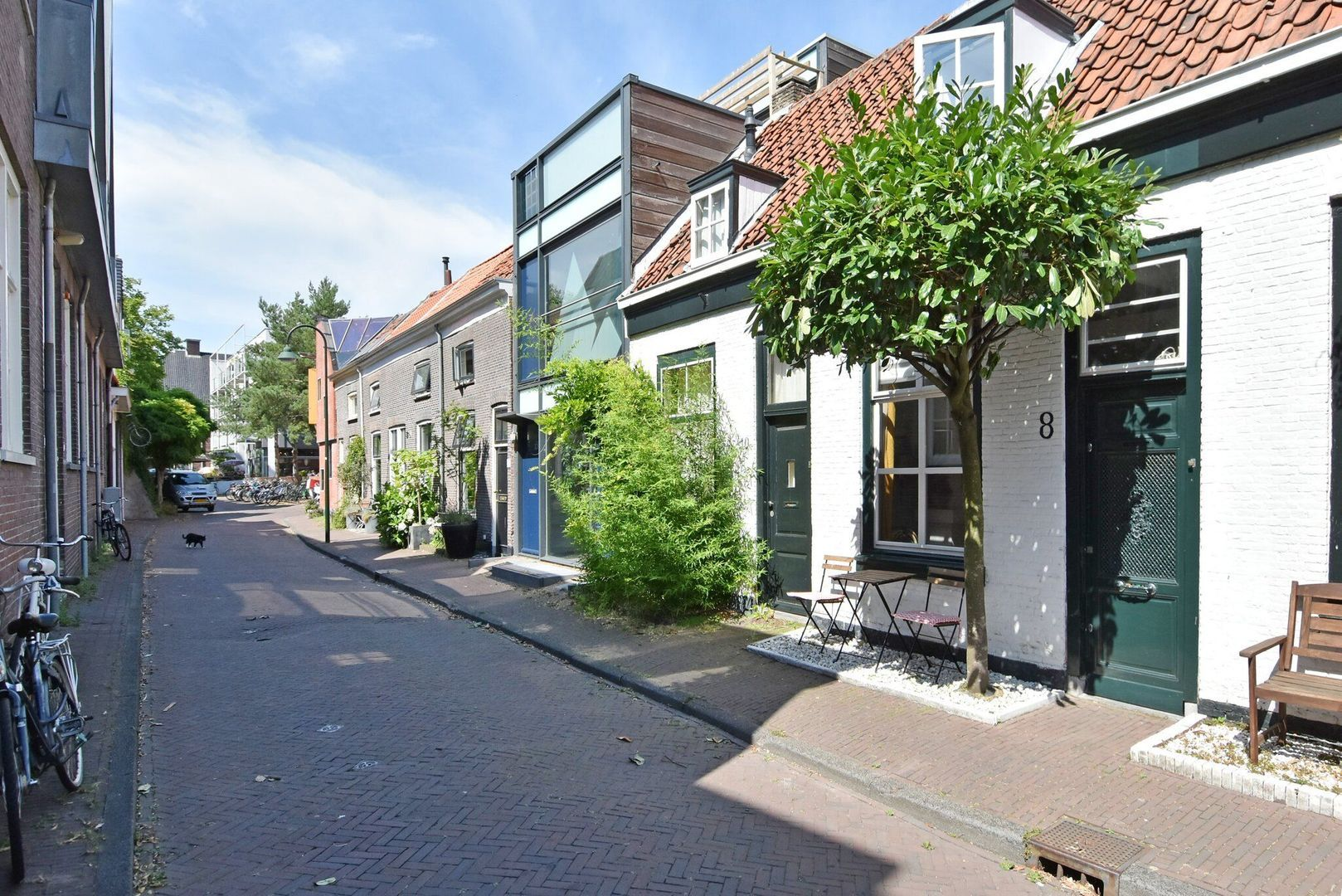 Pluympot 8, Delft foto-25