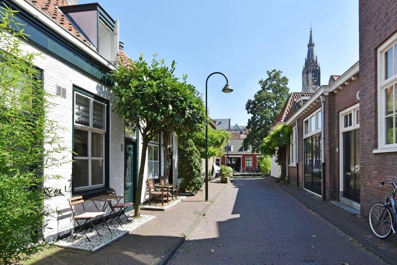 Pluympot 8, Delft foto-26