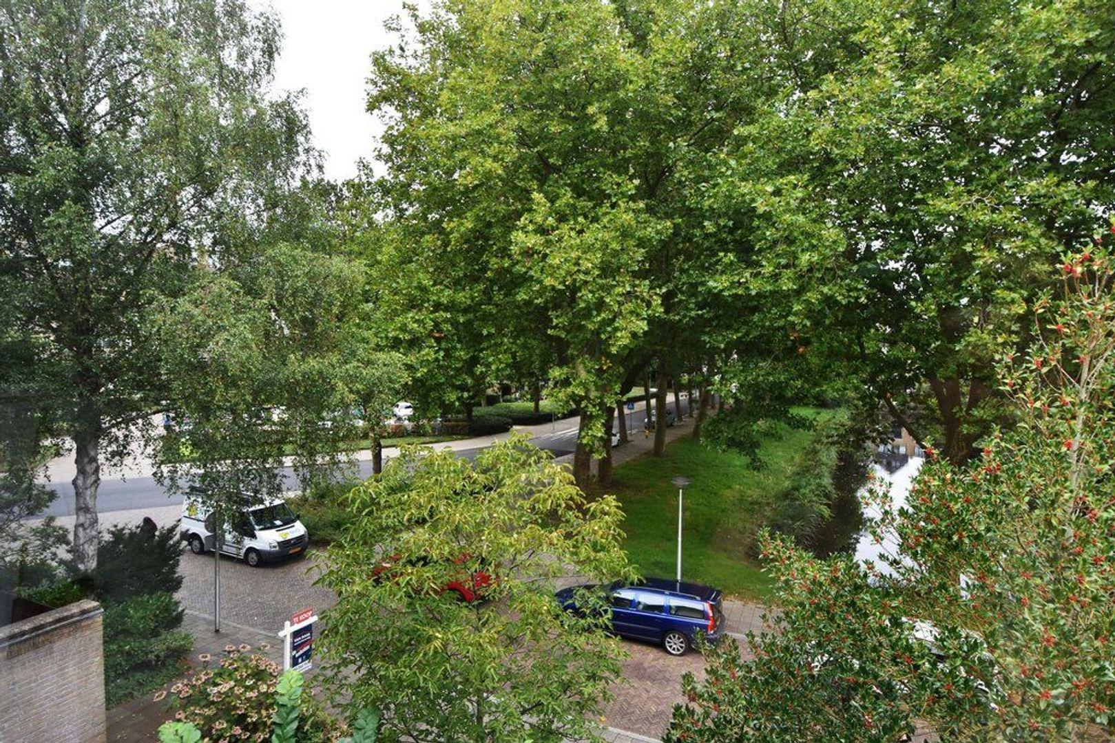 Antoon Coolenlaan 45, Delft foto-62