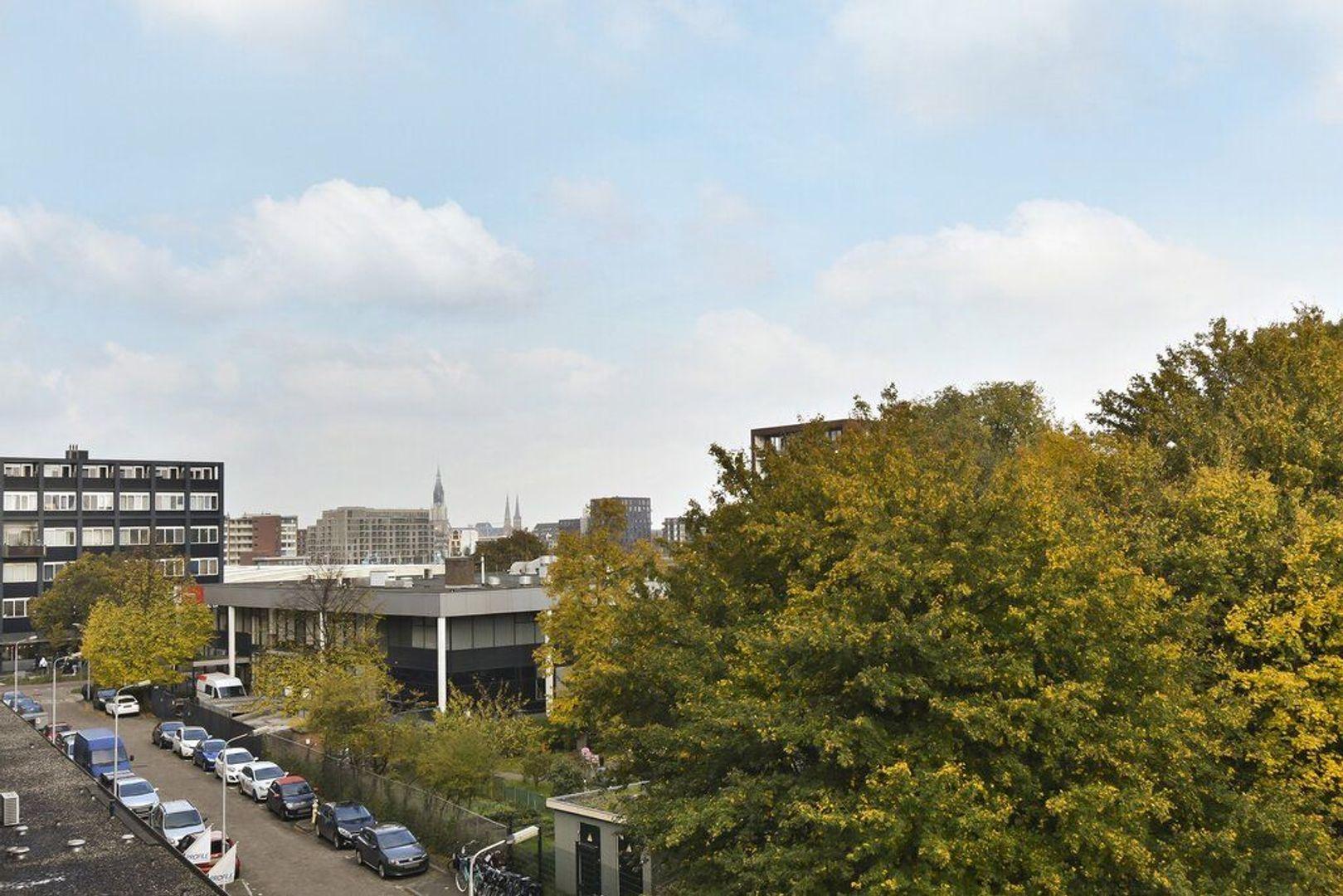 Papsouwselaan 257, Delft foto-8