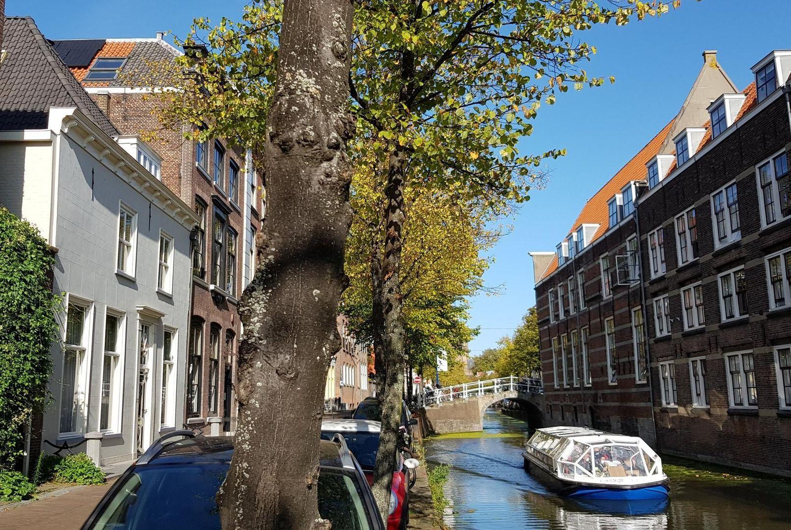 Oude Delft 45, Delft foto-1