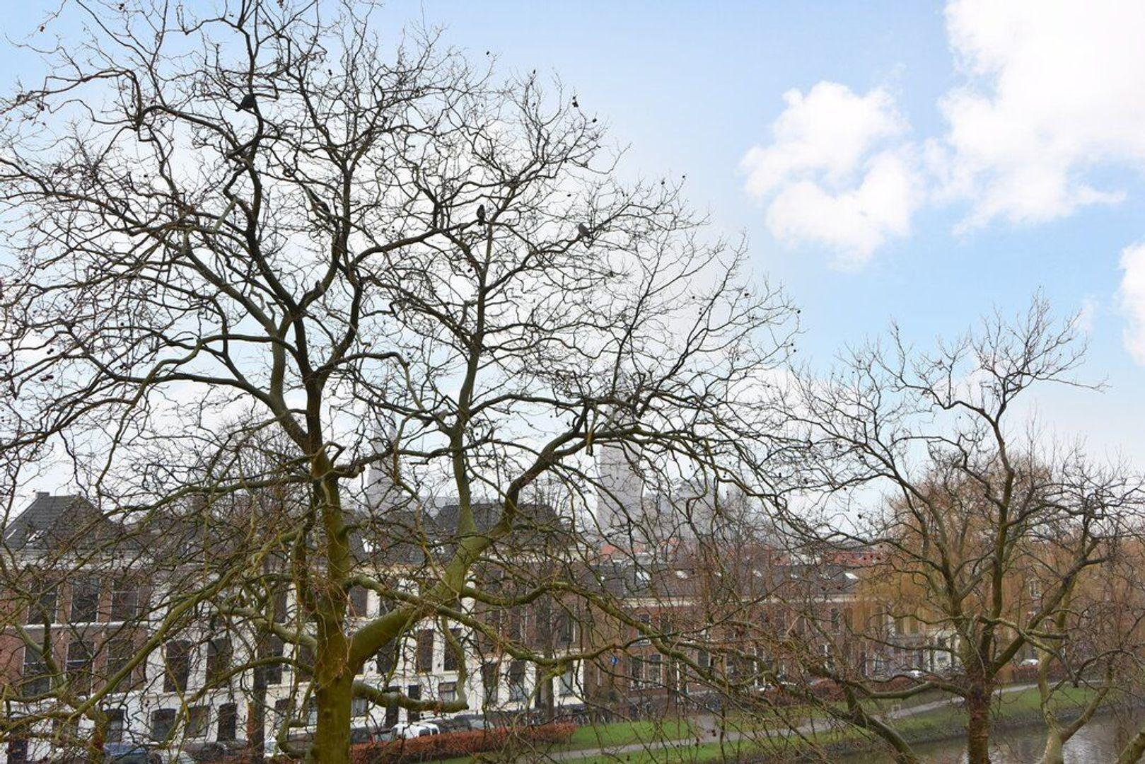 Oostsingel 30, Delft foto-34