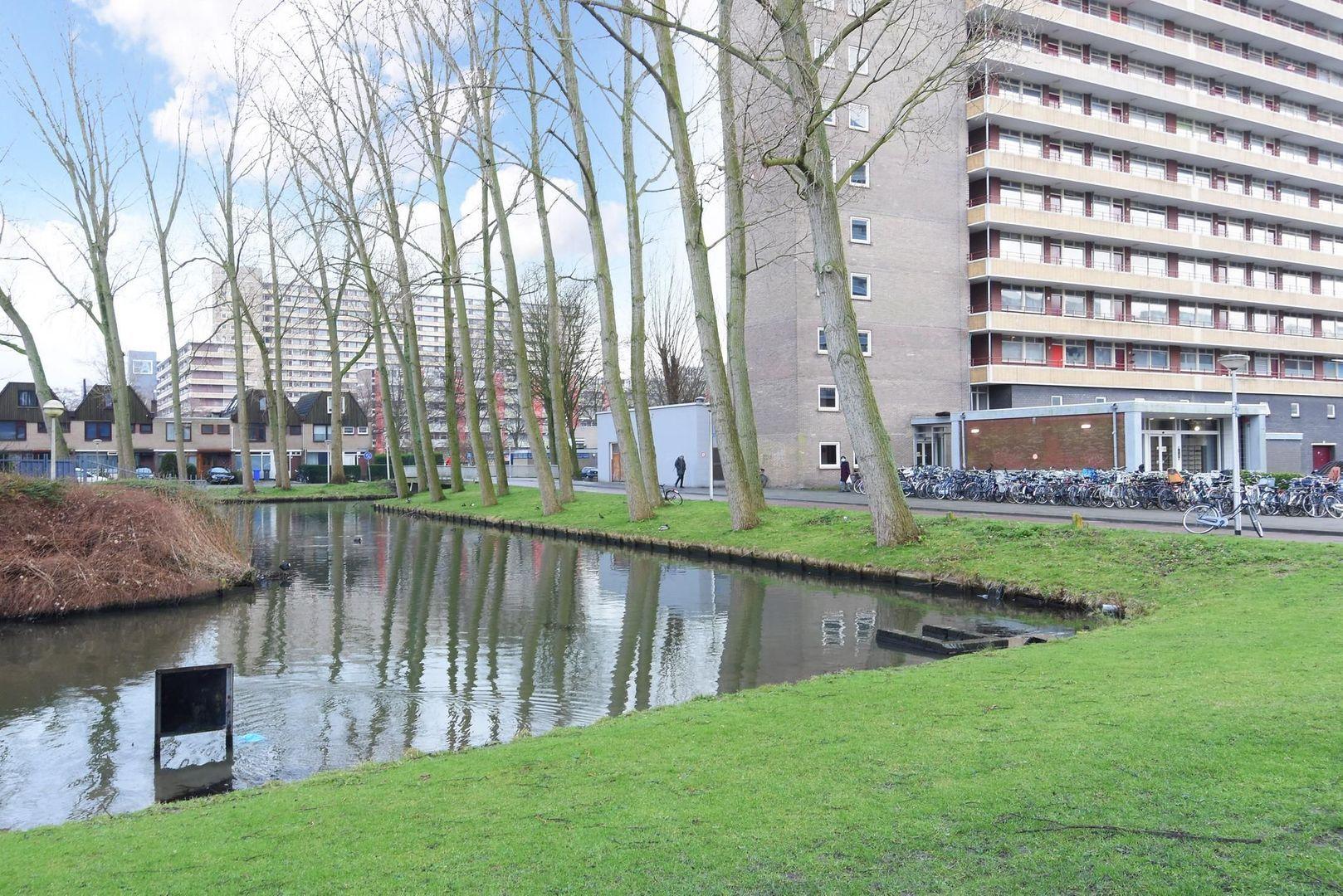 Hendrik Tollensstraat 194, Delft foto-1