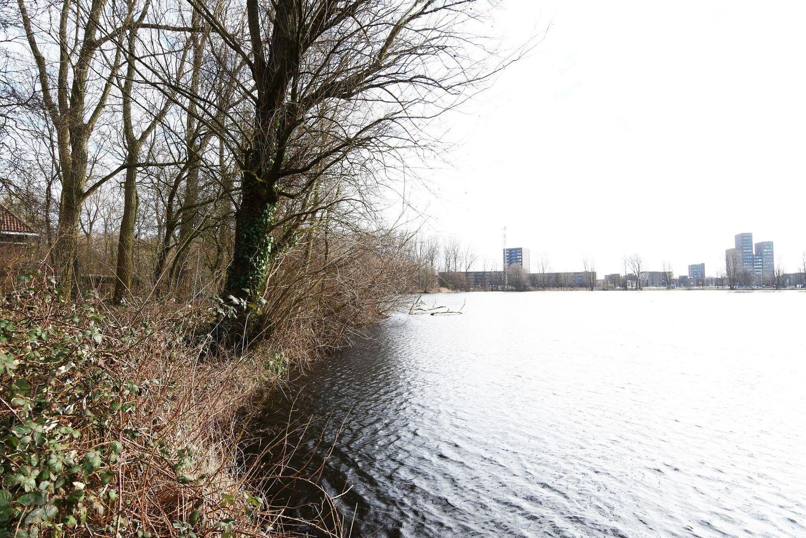 Guirlande 213, Den Haag foto-48