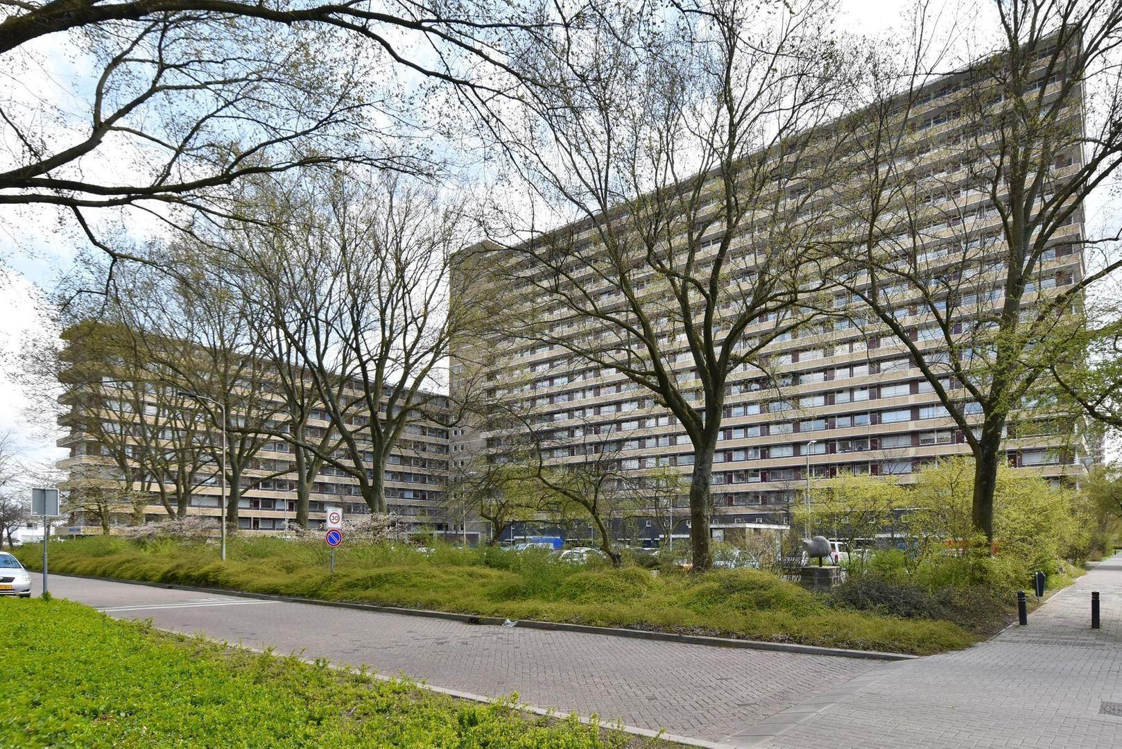 Bosboom-Toussaintplein 132, Delft foto-23