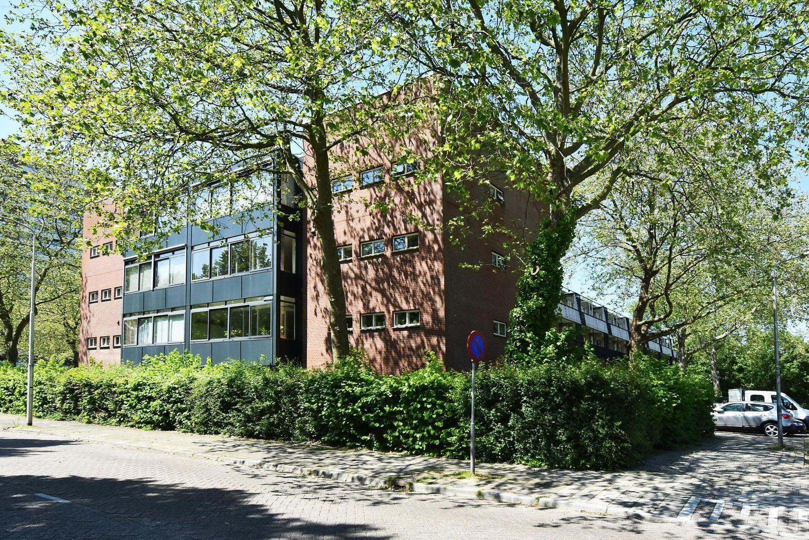 Apolloweg 37, Delft foto-1