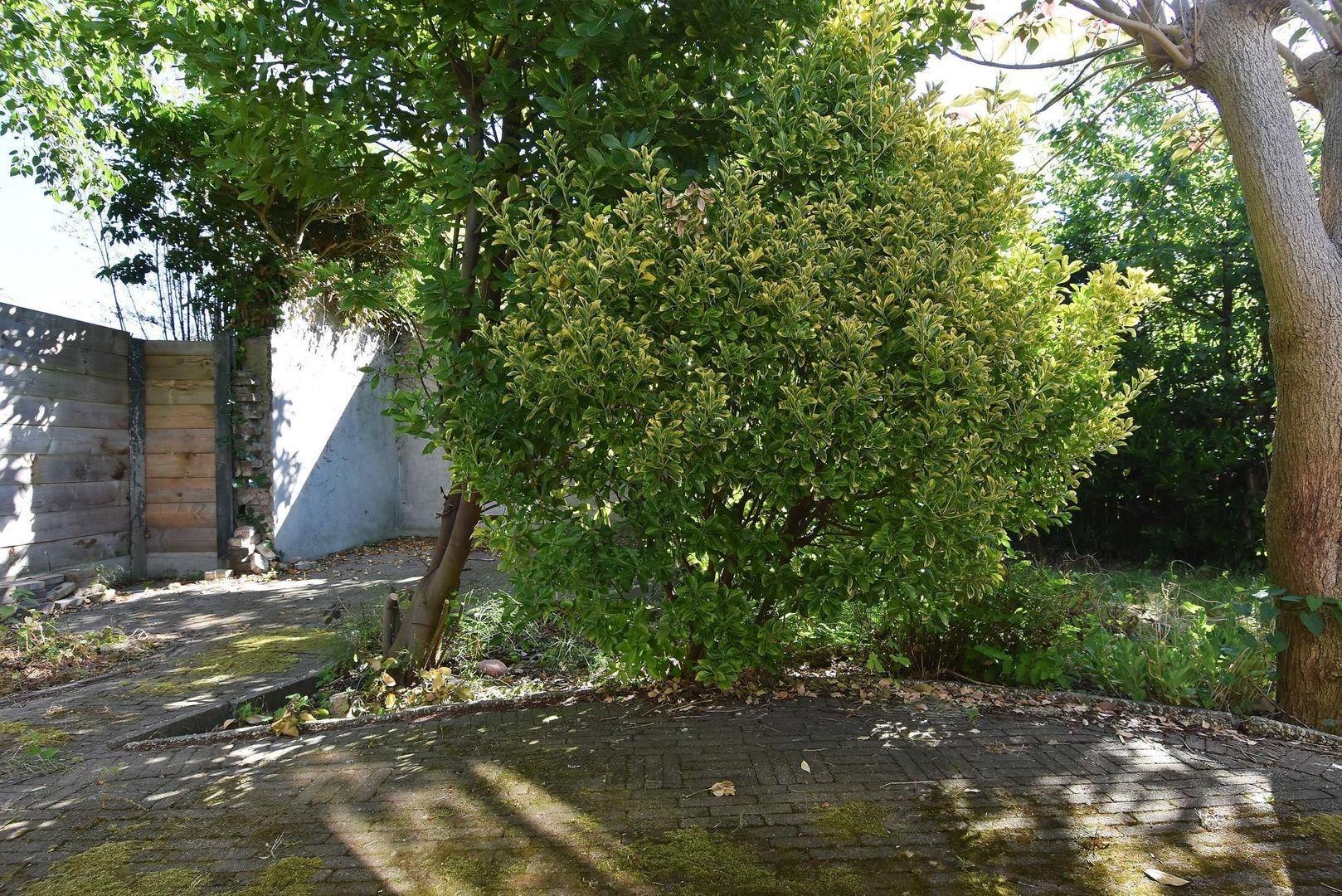 Tuinstraat 36, Delft foto-15
