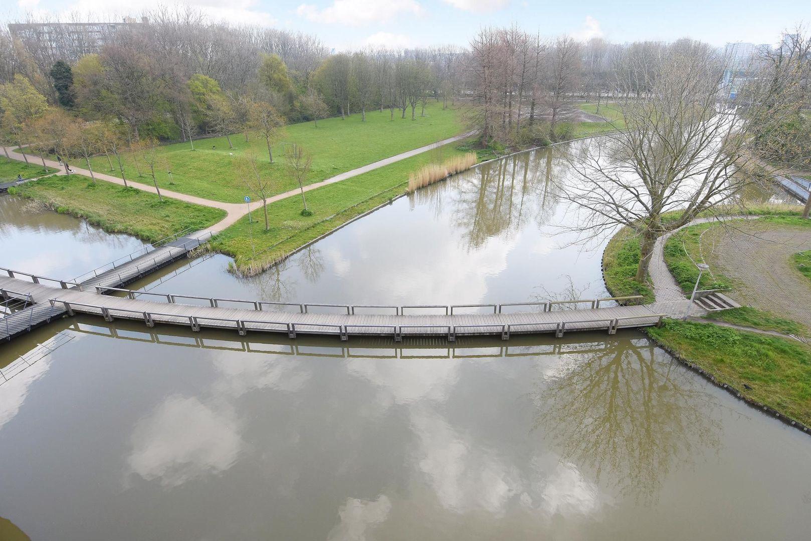 Parkzoom 211, Delft foto-19