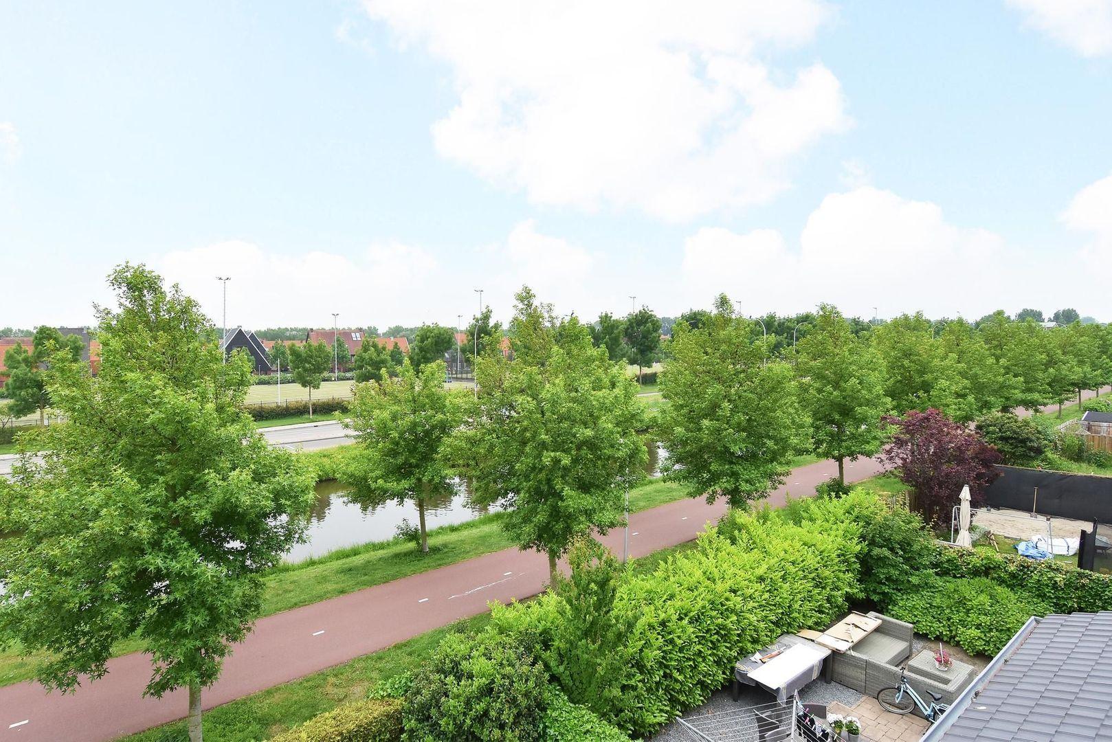 Moerasvaren 2, Den Haag foto-39