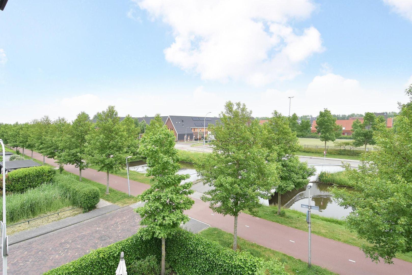 Moerasvaren 2, Den Haag foto-40