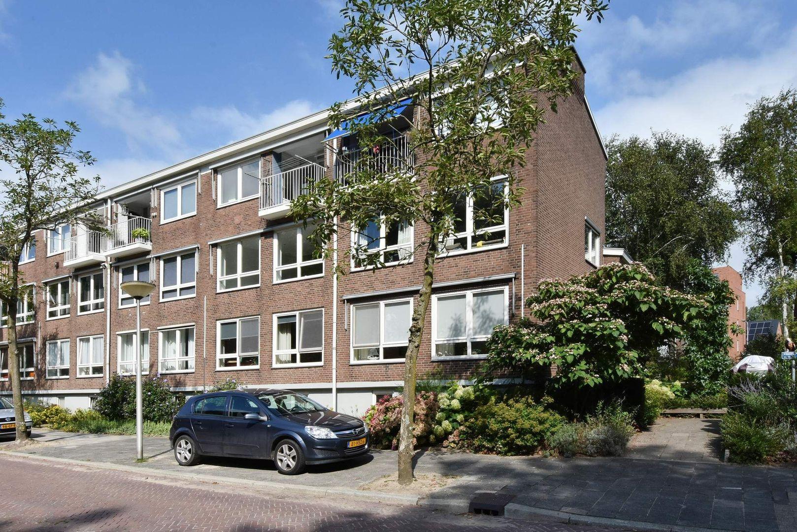 Van Blommesteinstraat 12, Delft foto-0
