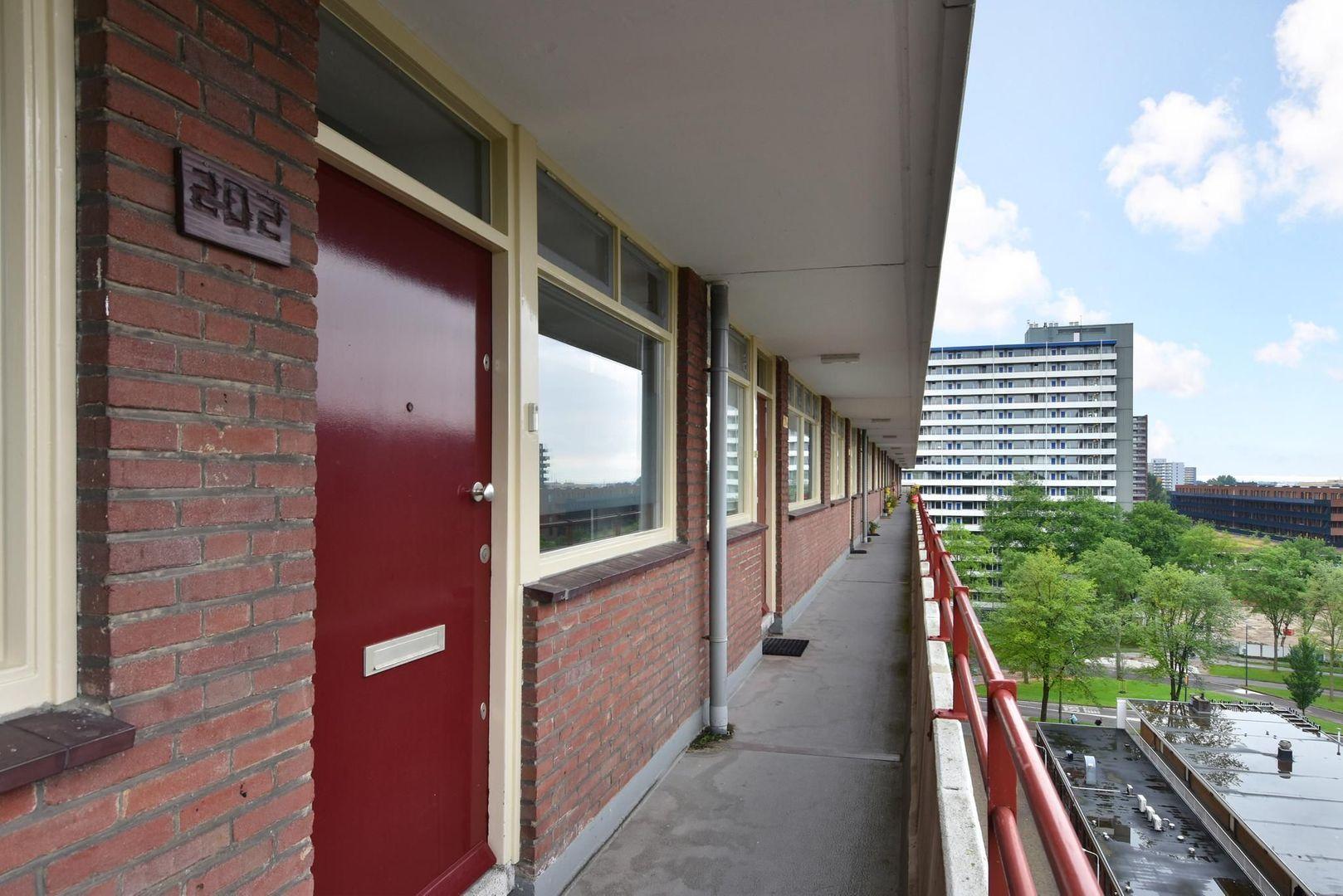 Hendrik Tollensstraat 202, Delft foto-1