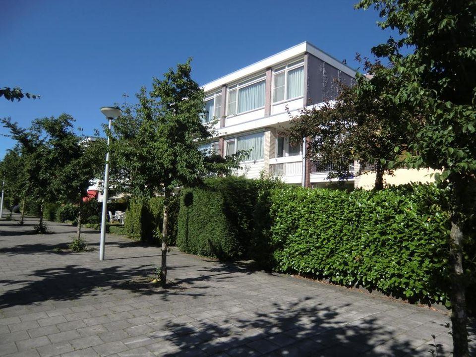 Holtmeulen, Amsterdam