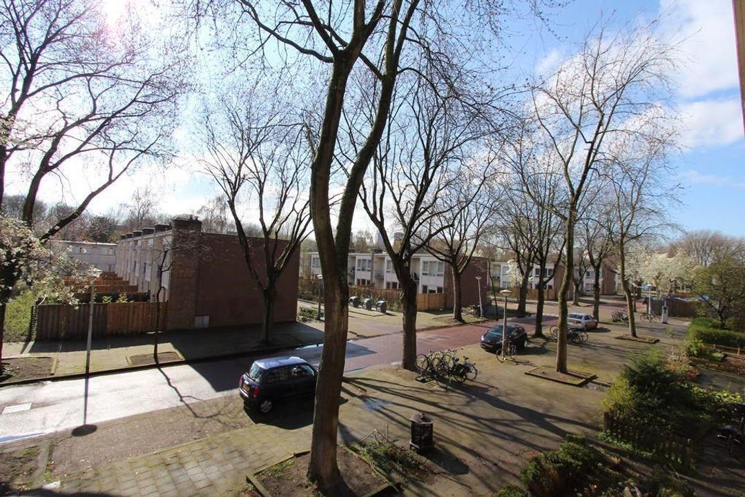 Pekelharingstraat, Amsterdam