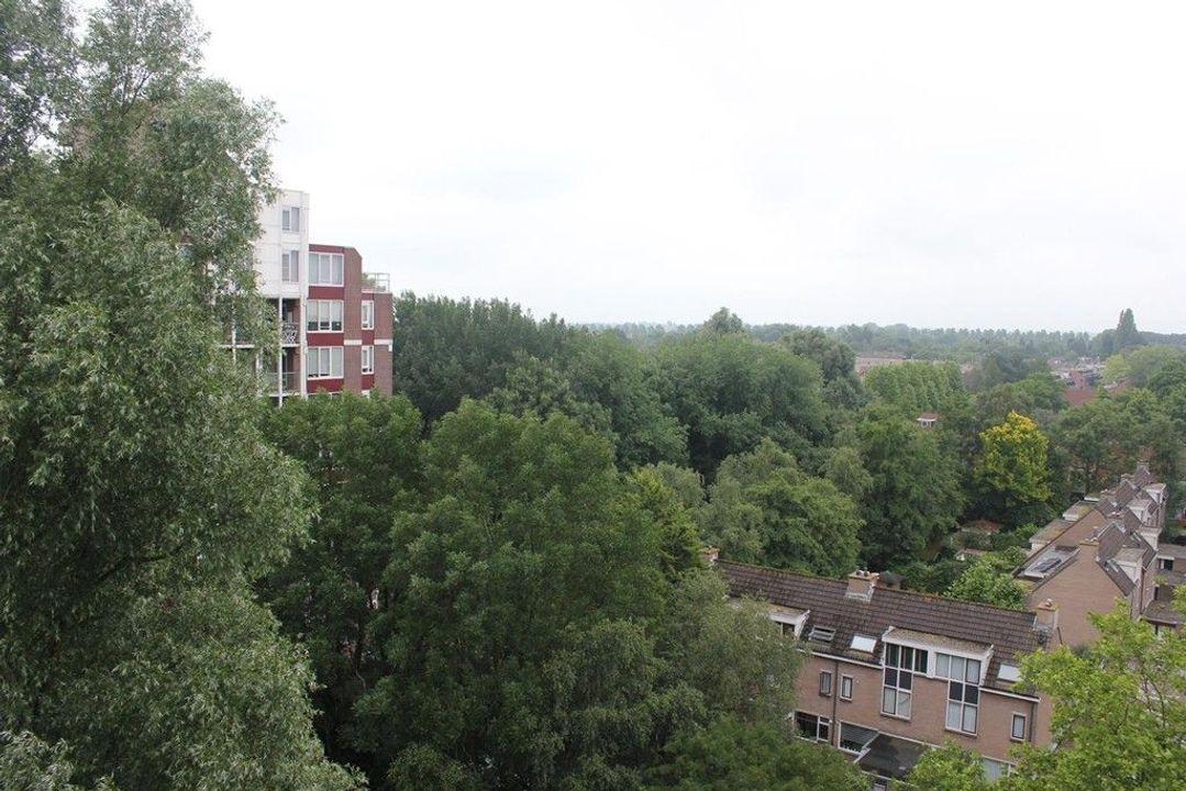 Logger, Amstelveen